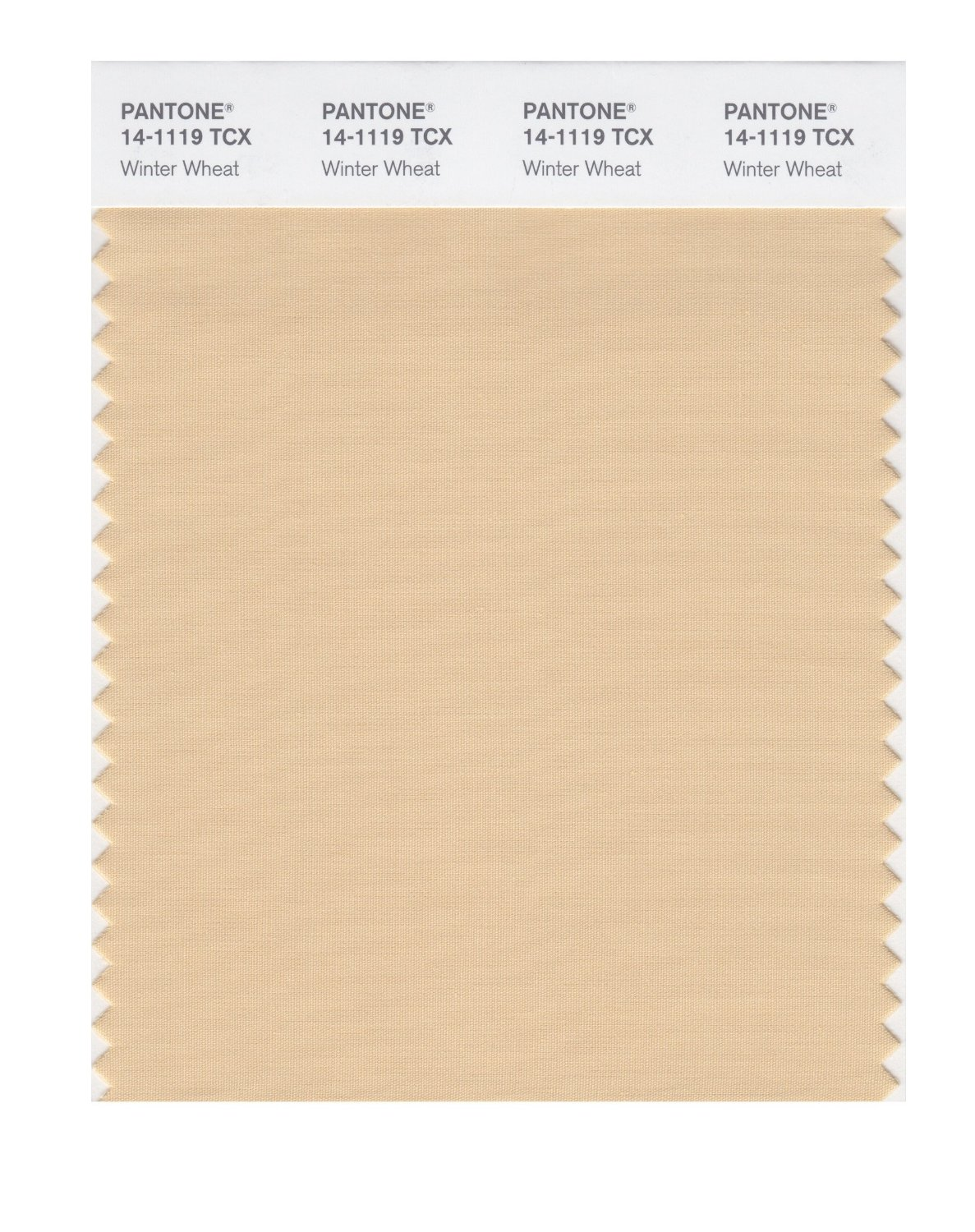 Pantone Smart Swatch 14-1119 Winter Wheat