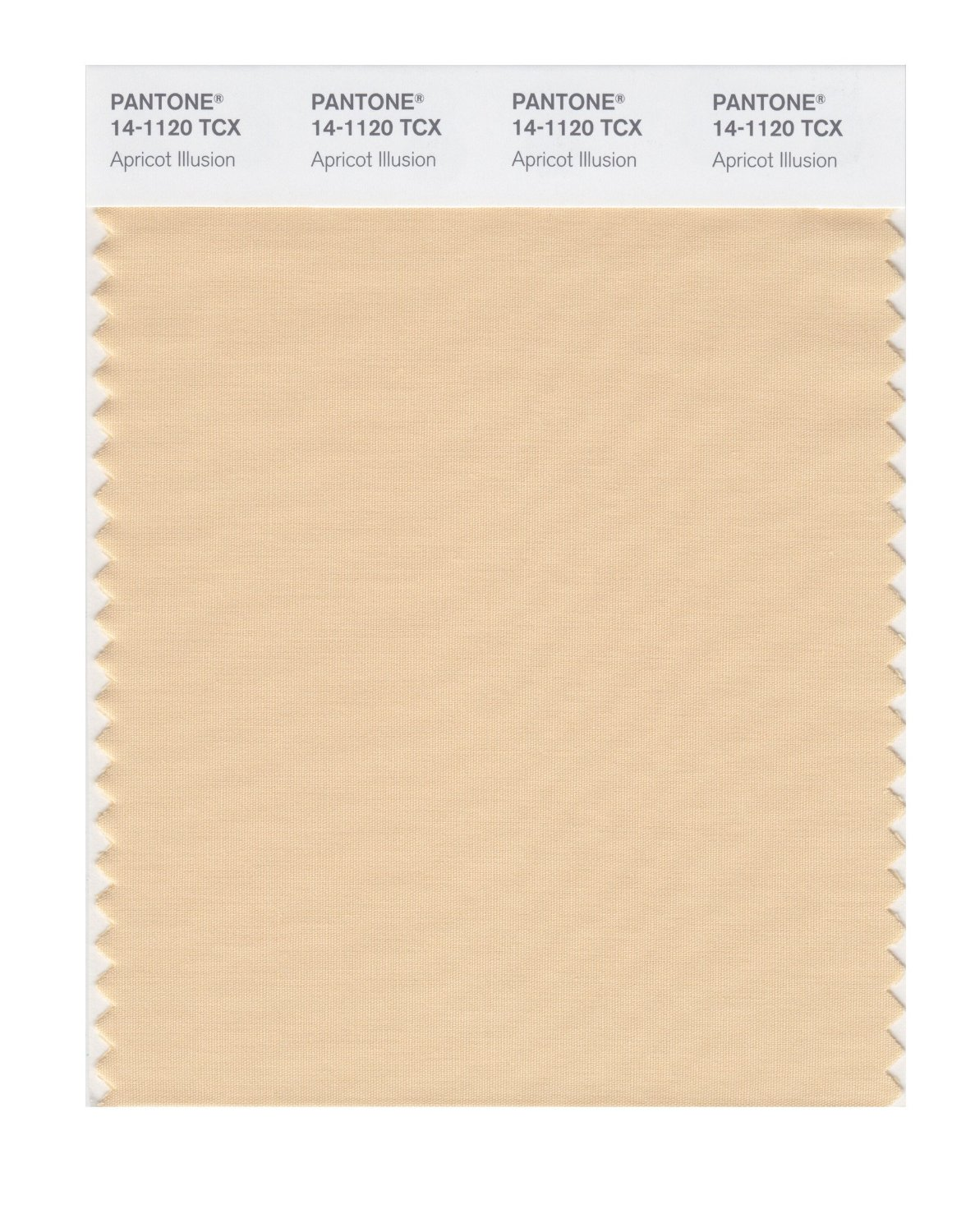 Pantone Smart Swatch 14-1120 Apricot Illusion