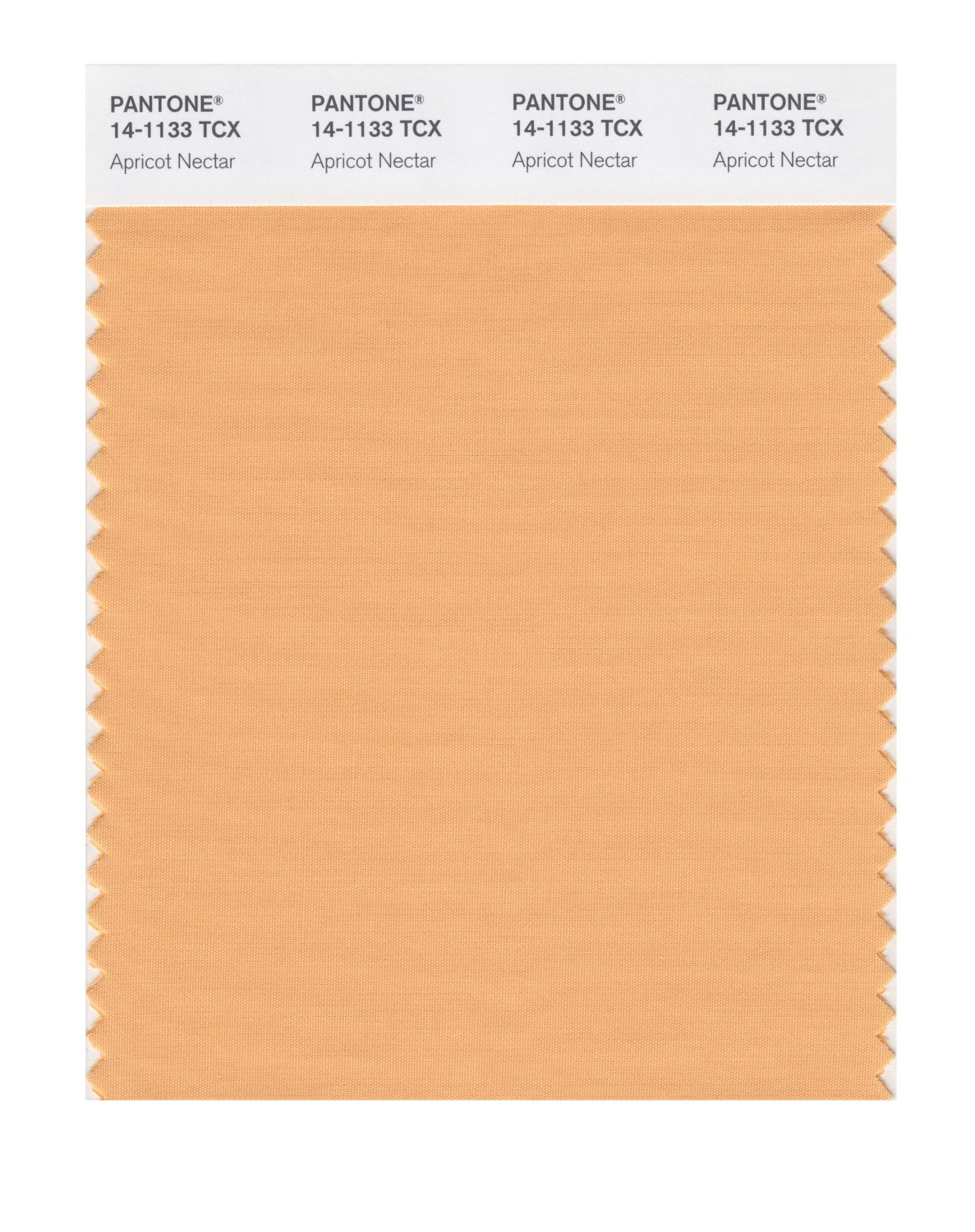 Pantone Smart Swatch 14-1133 Apricot Nectar