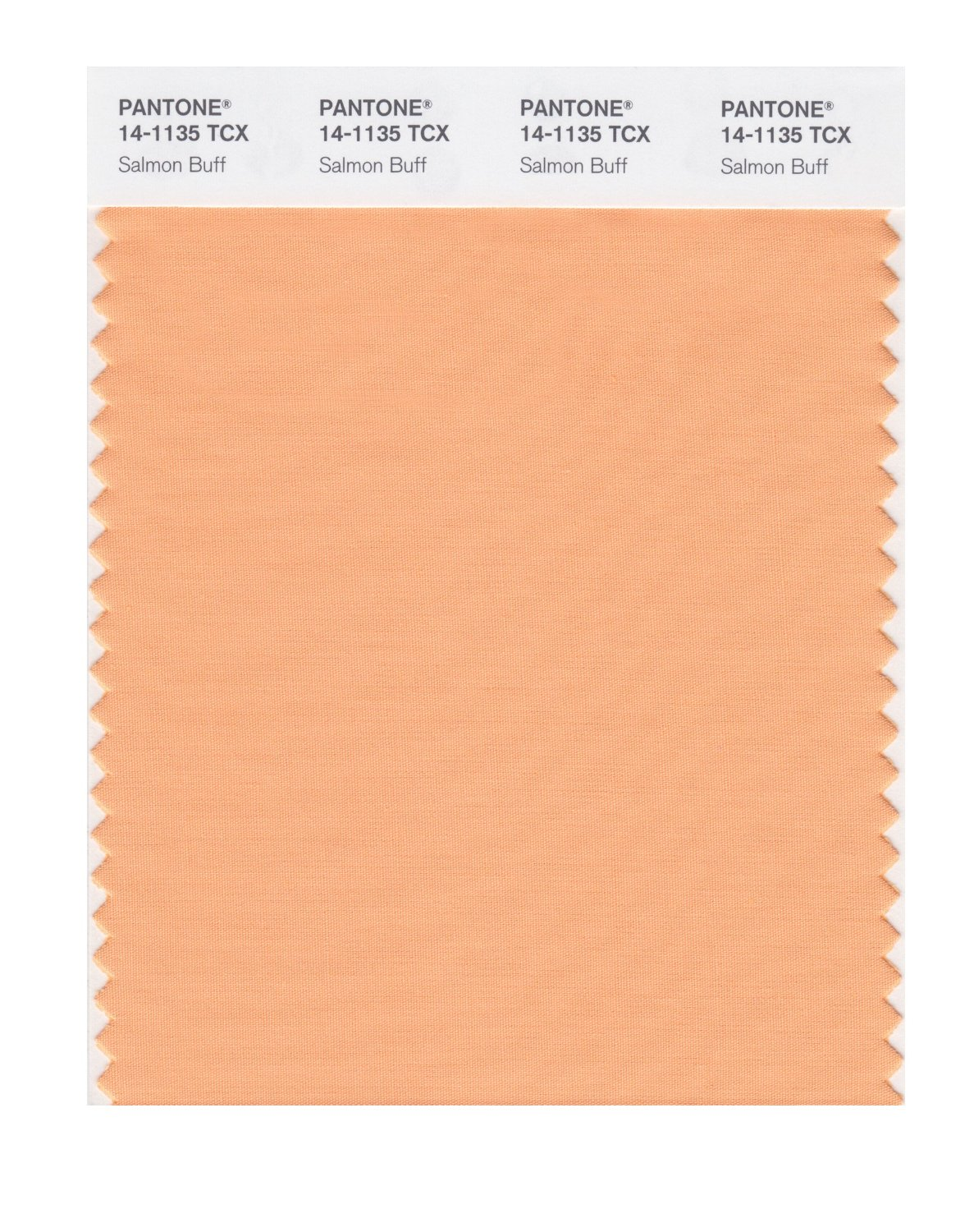 Pantone Smart Swatch 14-1135 Salmon Buff