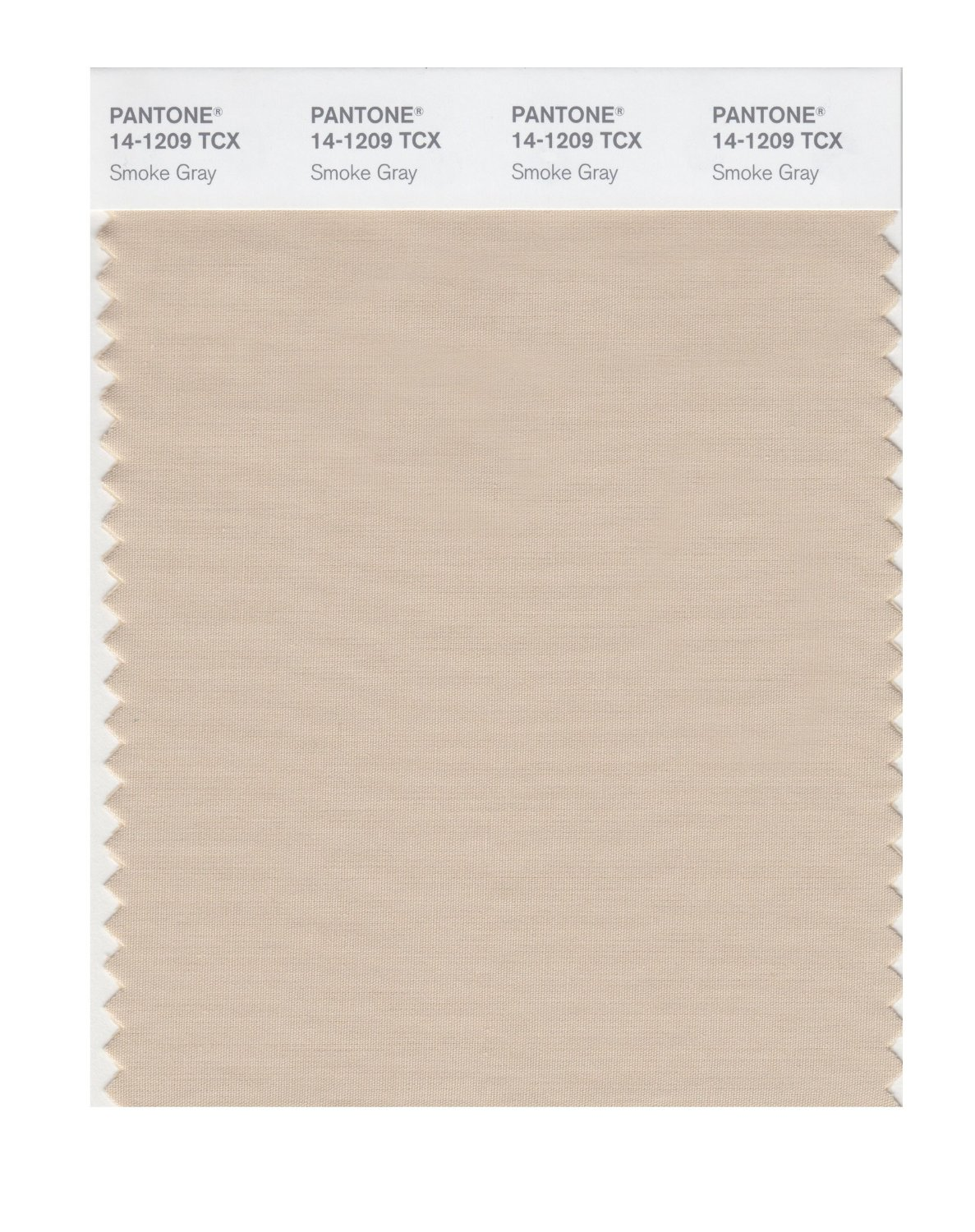 Pantone Smart Swatch 14-1209 Smoke Gray