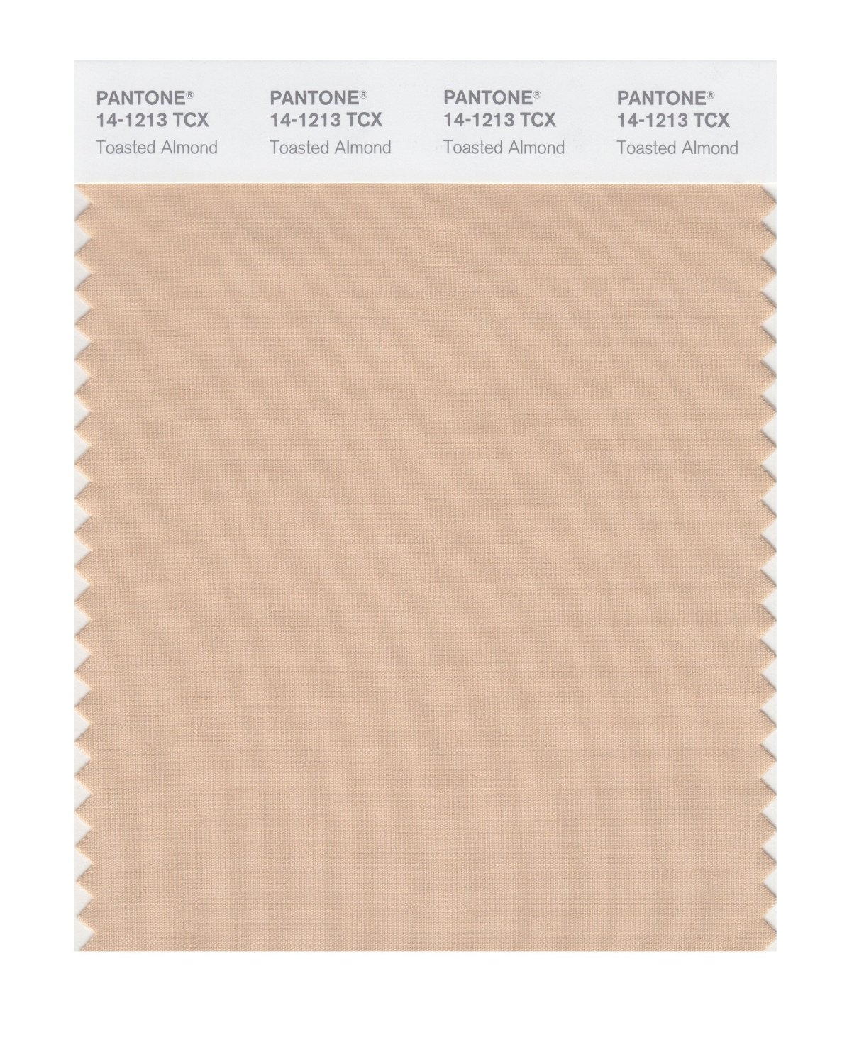 Pantone Smart Swatch 14-1213 Toasted Almond