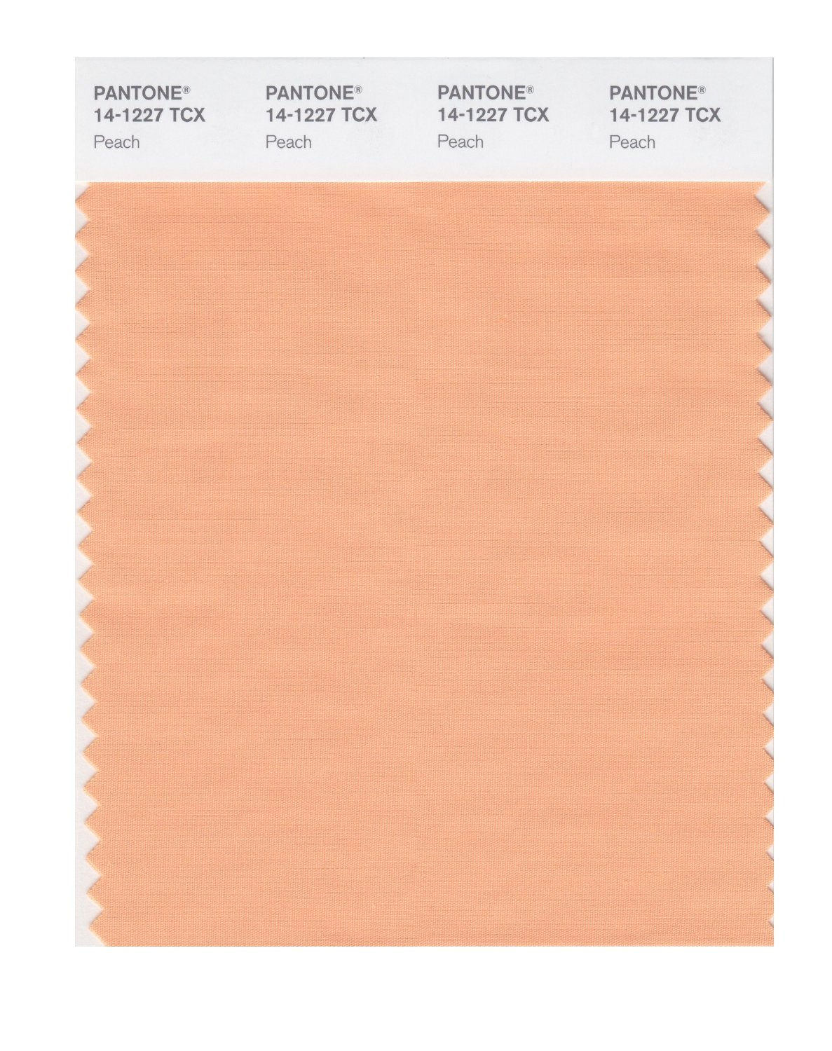 BUY Pantone Smart Swatch 14-1227 Peach: www.hyatts.com/pantone/pantone-smart-swatch-14-1227-peach-141227