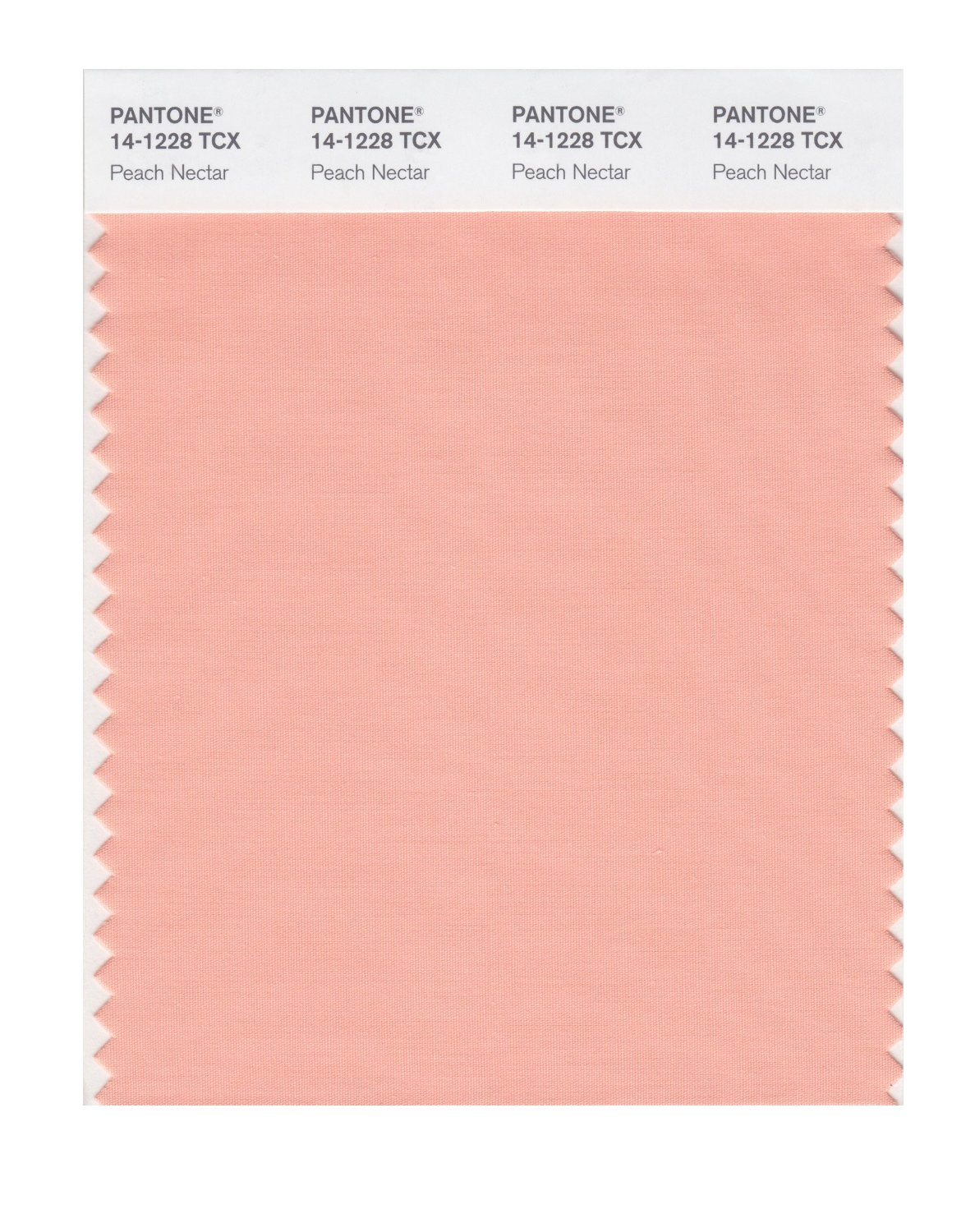 Pantone Smart Swatch 14-1228 Peach Nectar