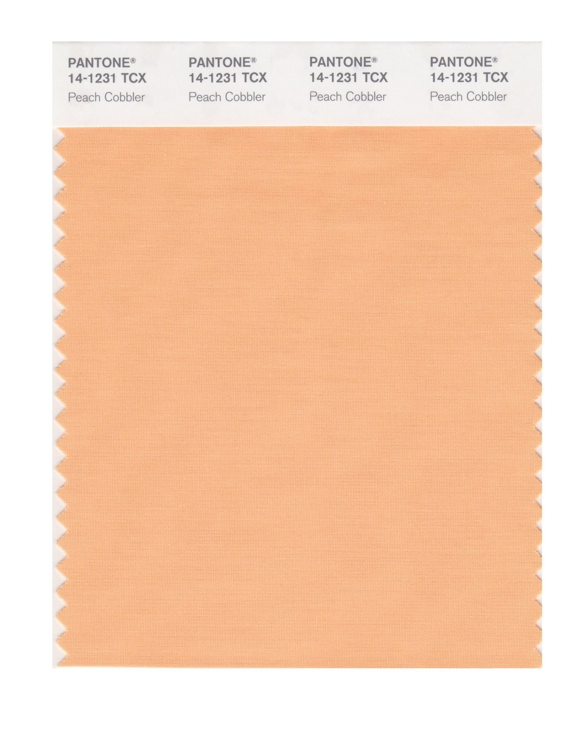Pantone Smart Swatch 14-1231 Peach Cobbler