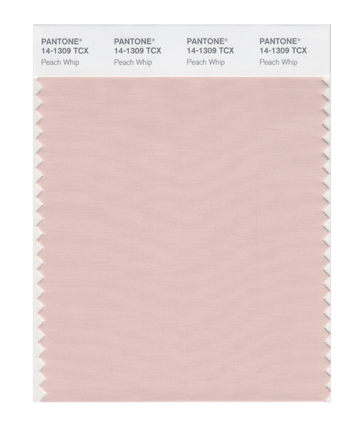 Pantone Smart Swatch 14-1309 Peach Whip