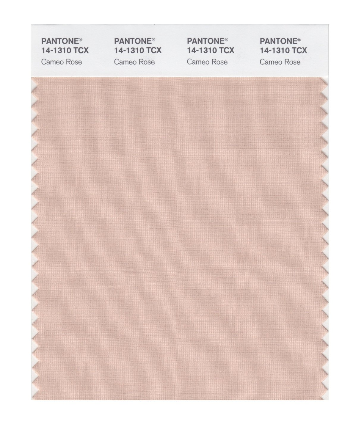 Pantone Smart Swatch 14-1310 Cameo Rose