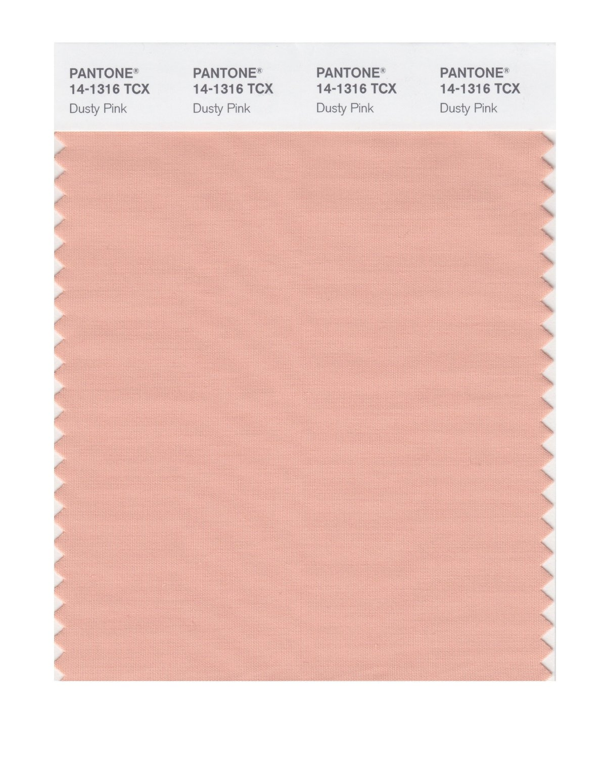 Pantone Smart Swatch 14-1316 Dusty Pink
