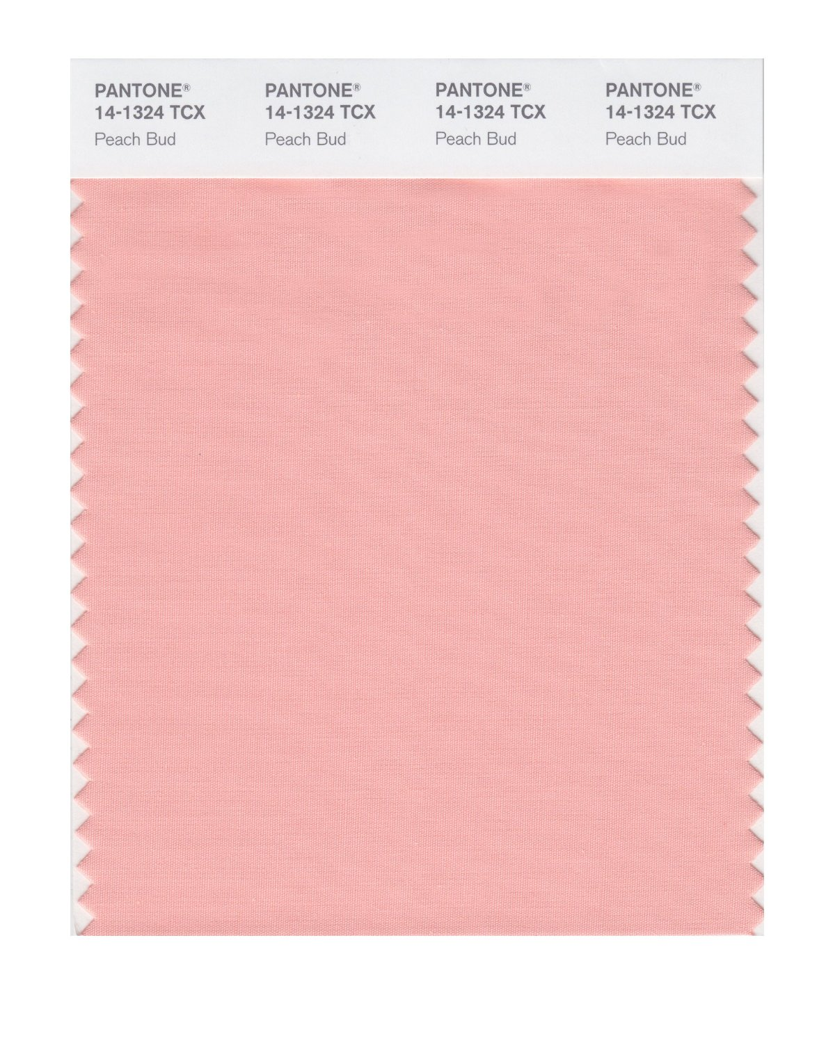 Pantone Smart Swatch 14-1324 Peach Bud