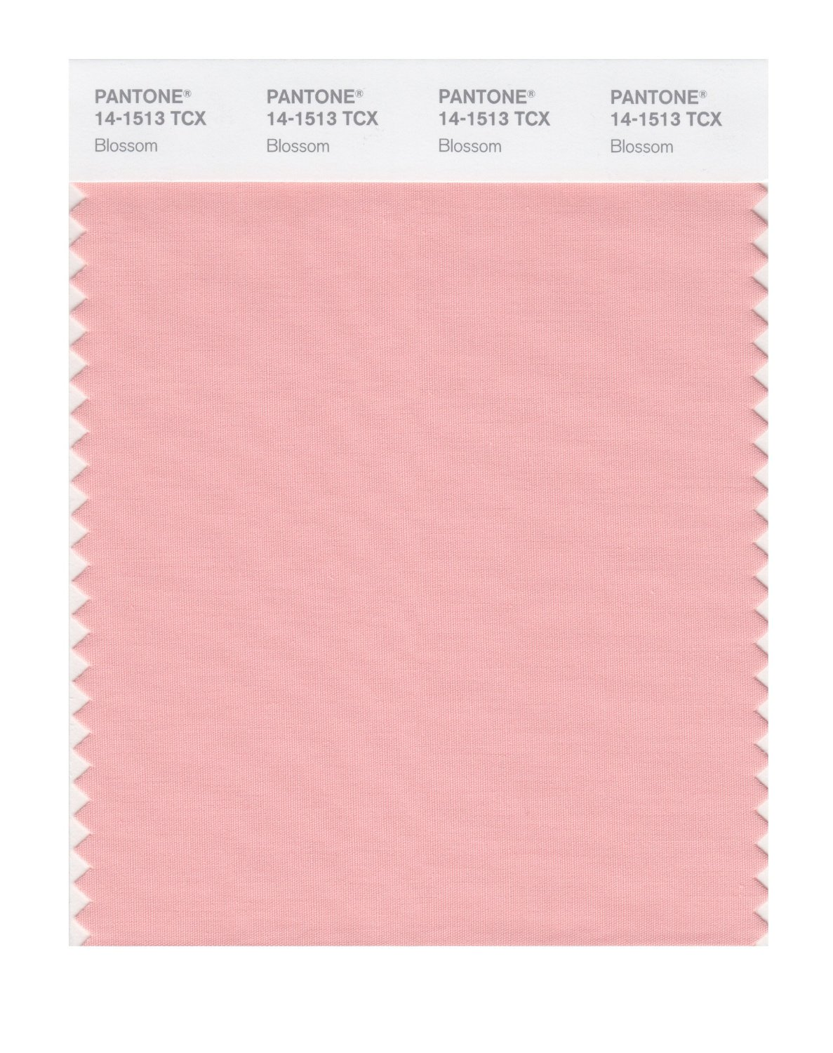 Pantone Smart Swatch 14-1513 Blossom
