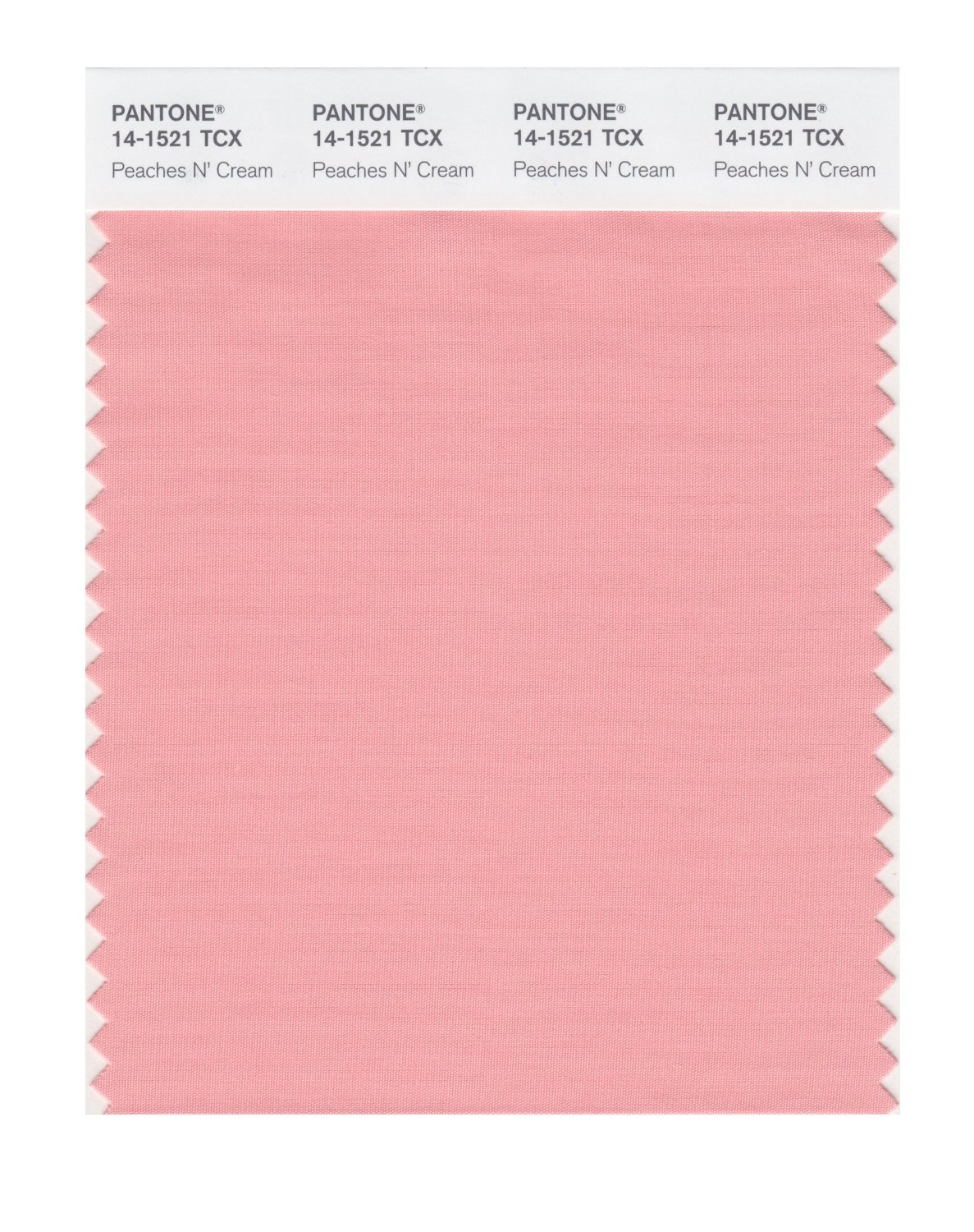 Buy pantone smart swatch 14 1521 peaches n 39 cream for Where to buy pantone paint