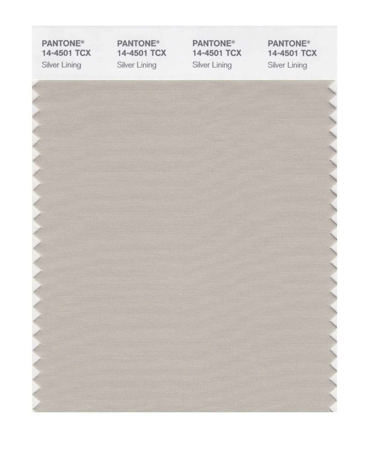 Pantone Smart Swatch 14-4501 Silver Lining
