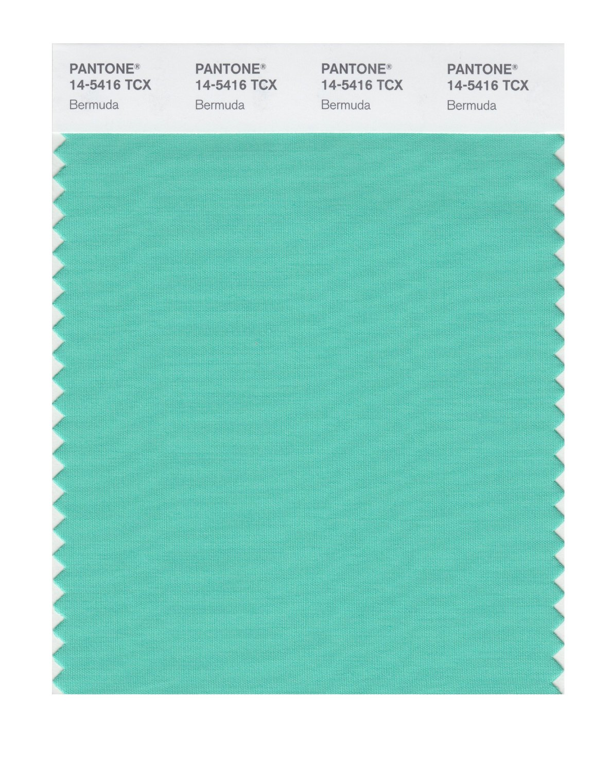 Pantone Smart Swatch 14-5416 Bermuda