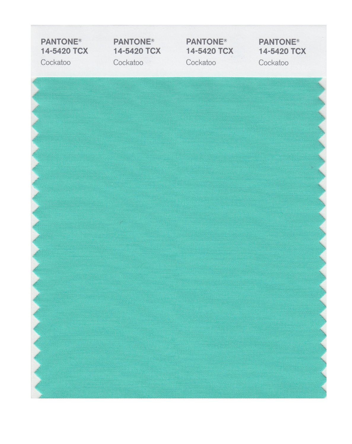 Pantone Smart Swatch 14-5420 Cockatoo