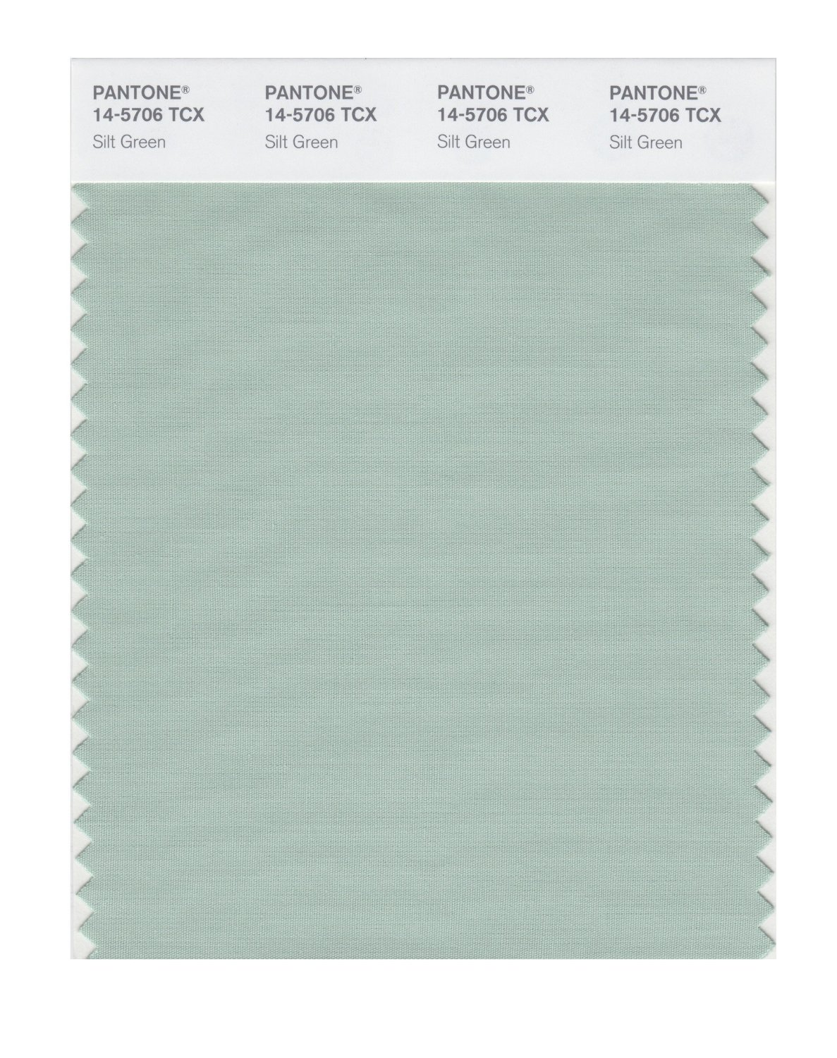 Pantone Smart Swatch 14-5706 Silt Green