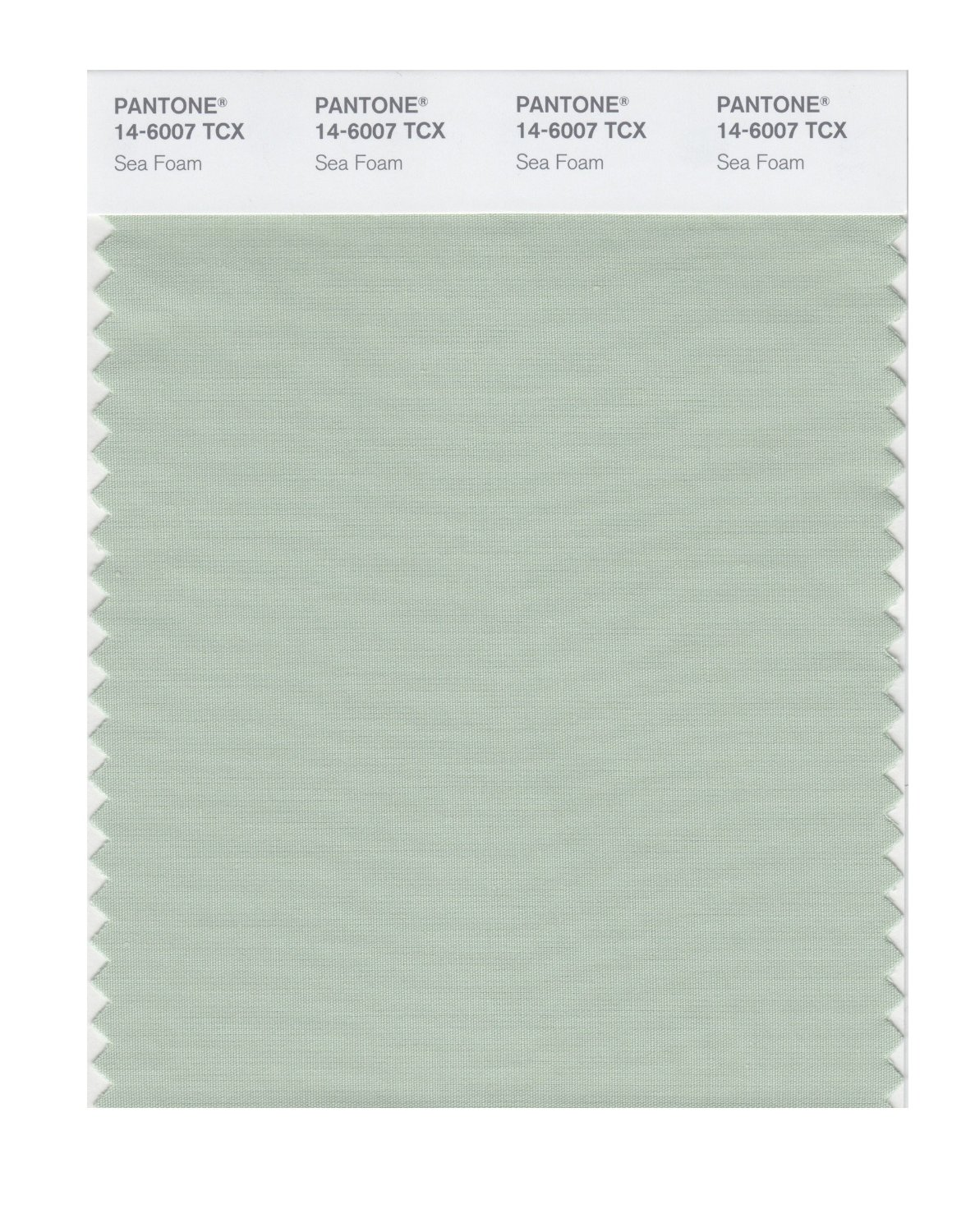 Pantone Smart Swatch 14-6007 Sea Foam