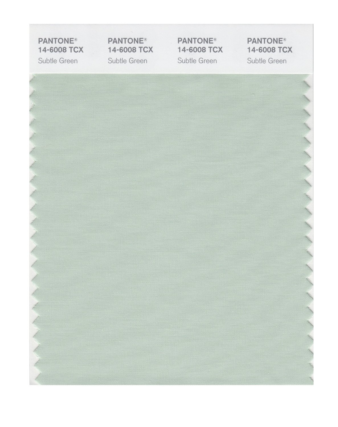Pantone Smart Swatch 14-6008 Subtle Green