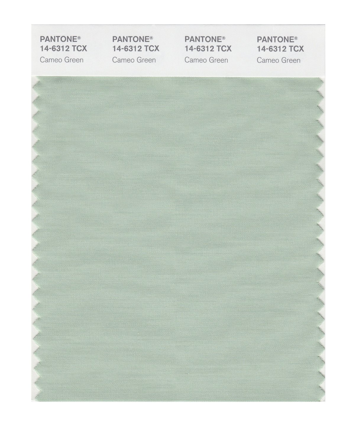 Pantone Smart Swatch 14-6312 Cameo Green