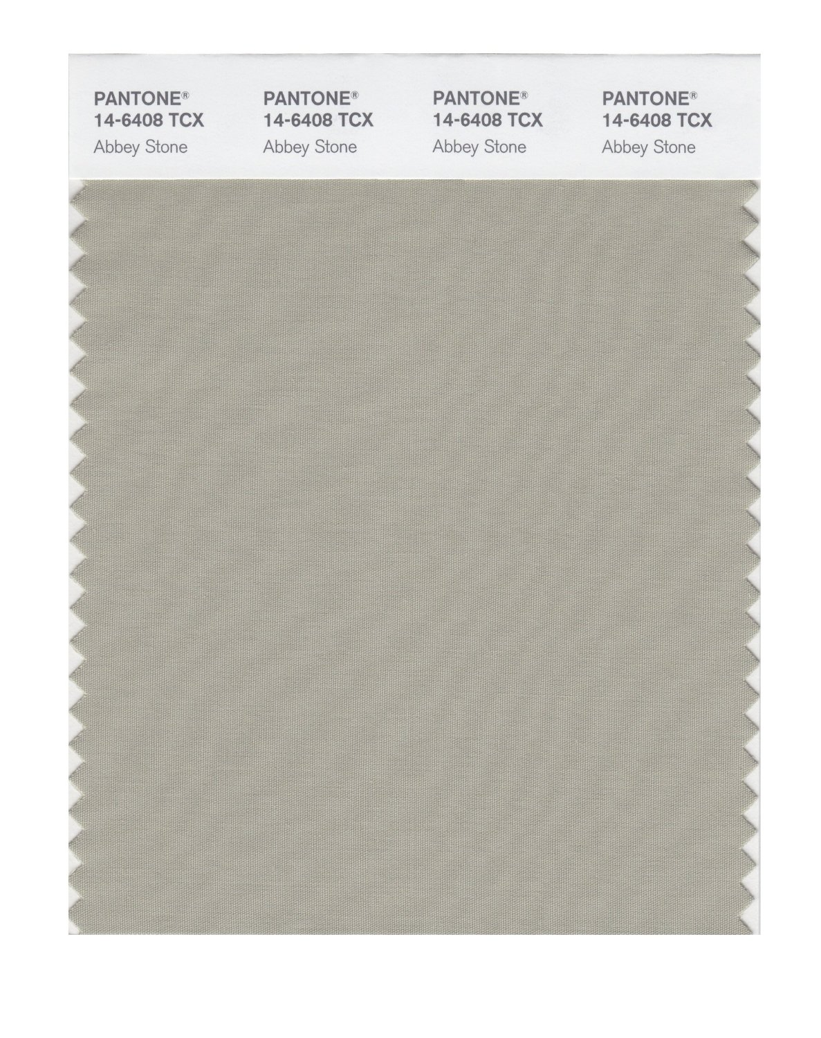 Pantone Smart Swatch 14-6408 Abbey Stone