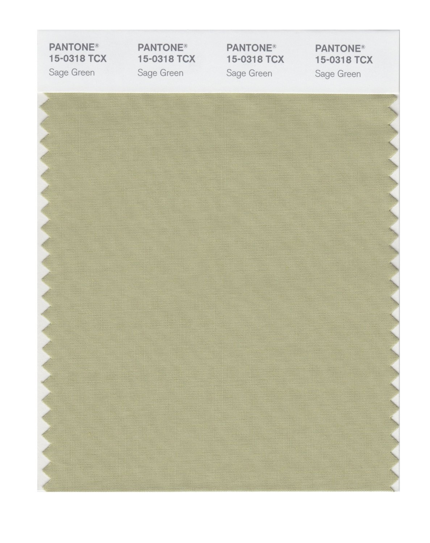 Buy Pantone Smart Swatch 15 0318 Sage Green