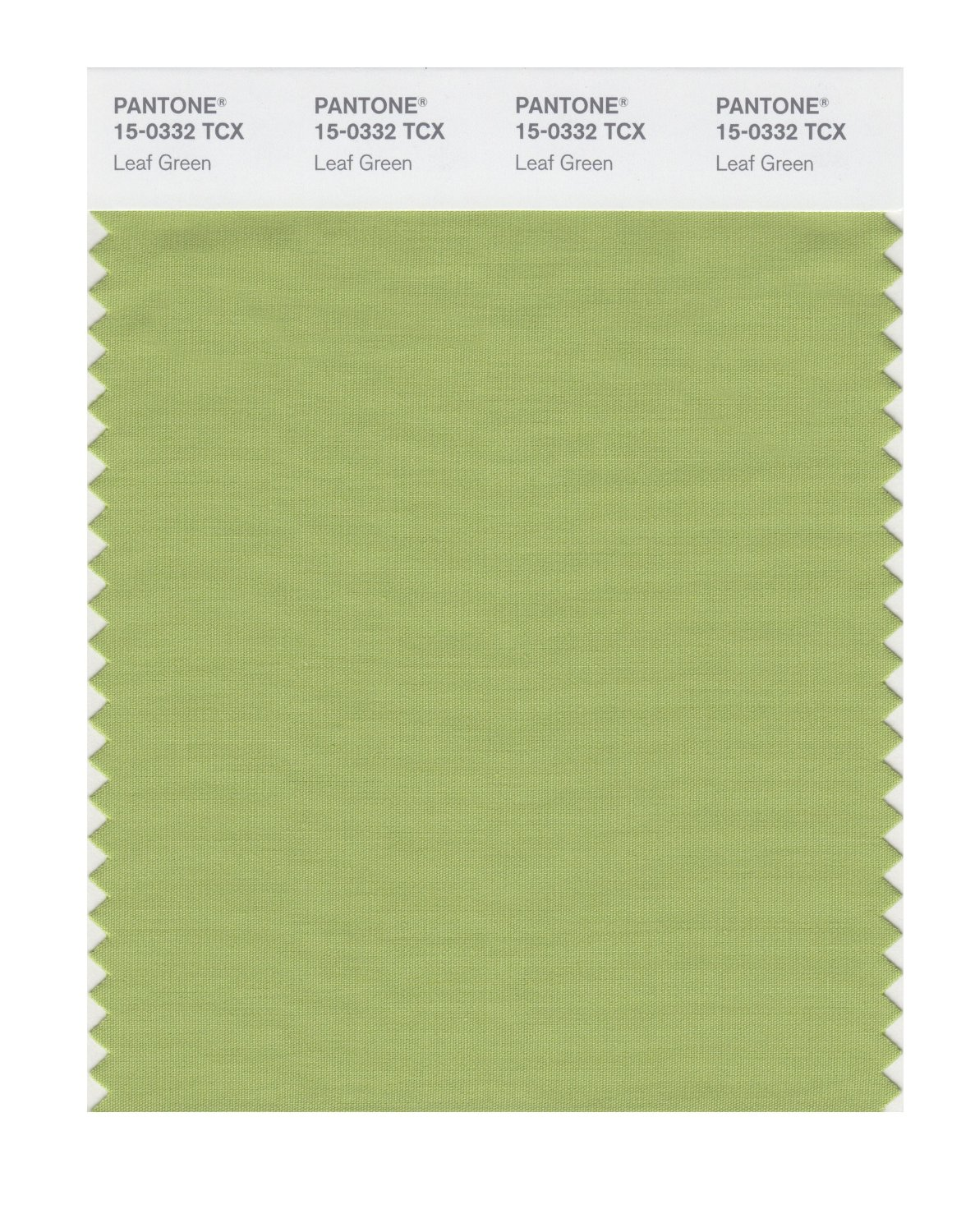 Pantone Smart Swatch 15-0332 Leaf Green