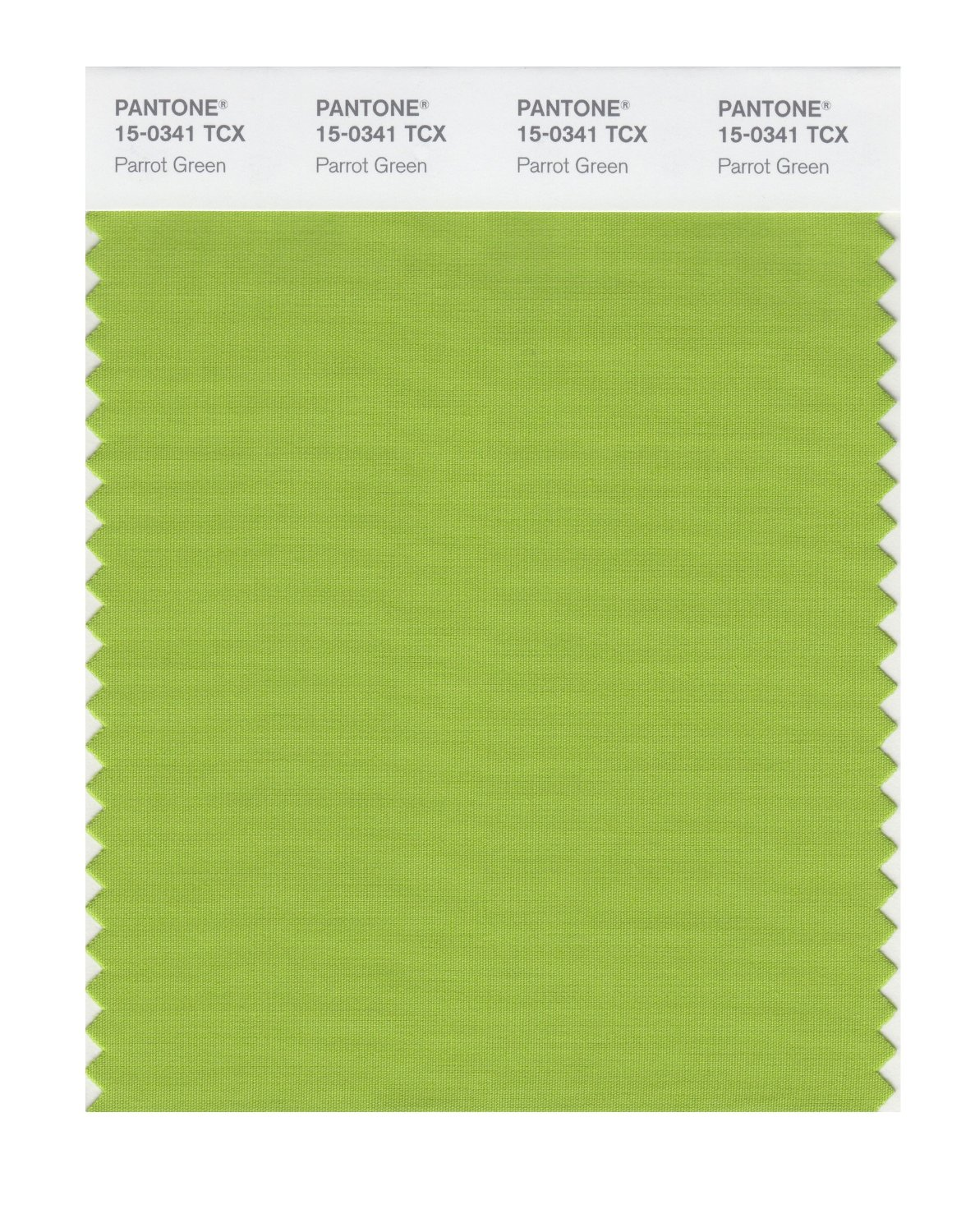 Buy Pantone Smart Swatch 15 0341 Parrot Green