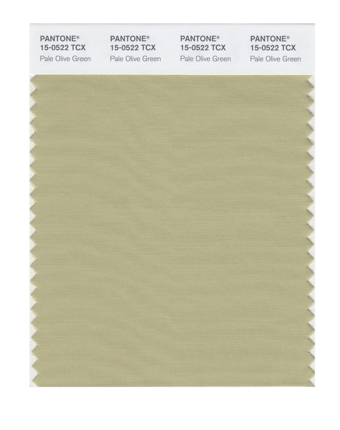 Pantone Smart Swatch 15-0522 Pale Olive Green