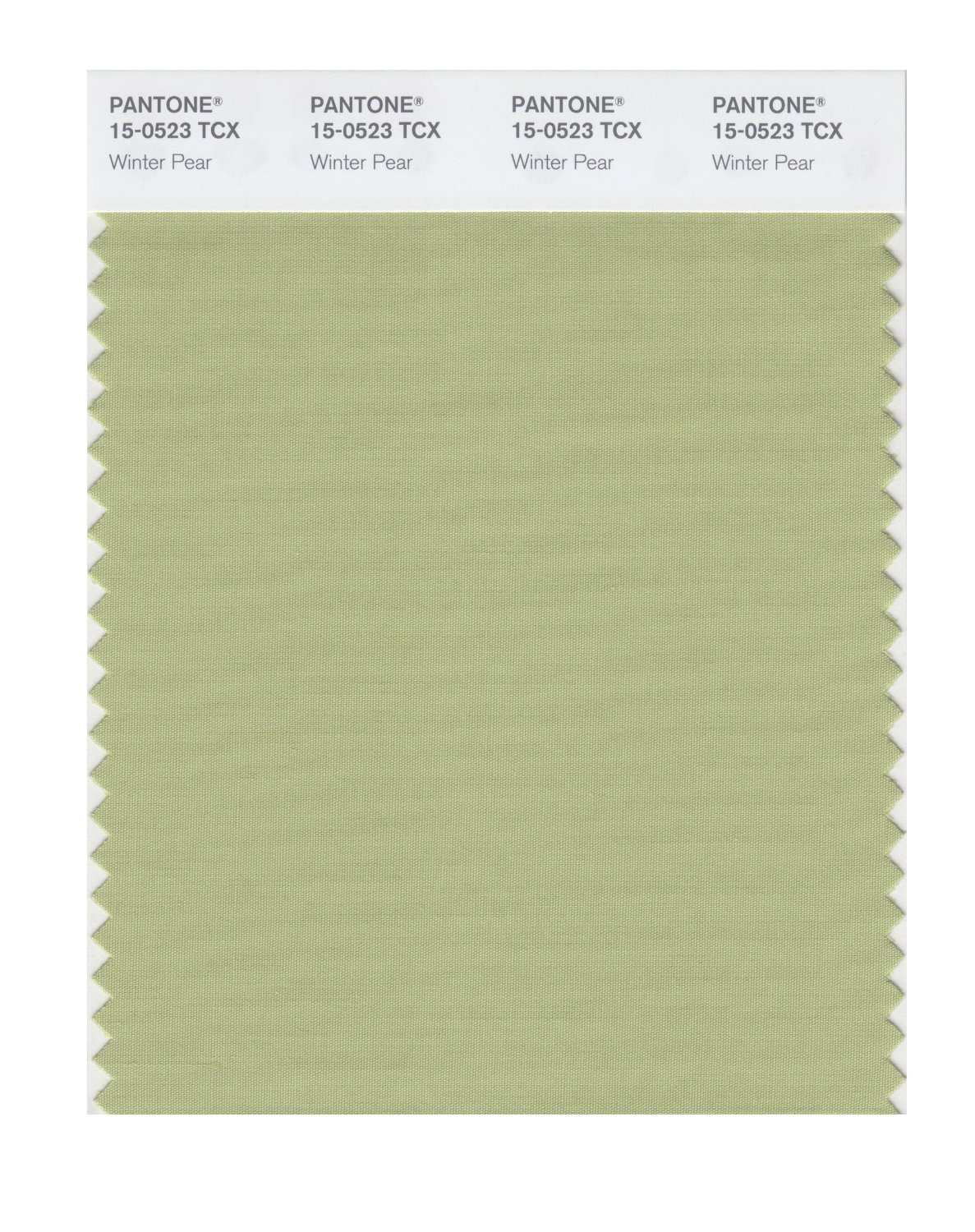 Pantone Smart Swatch 15-0523 Winter Pear