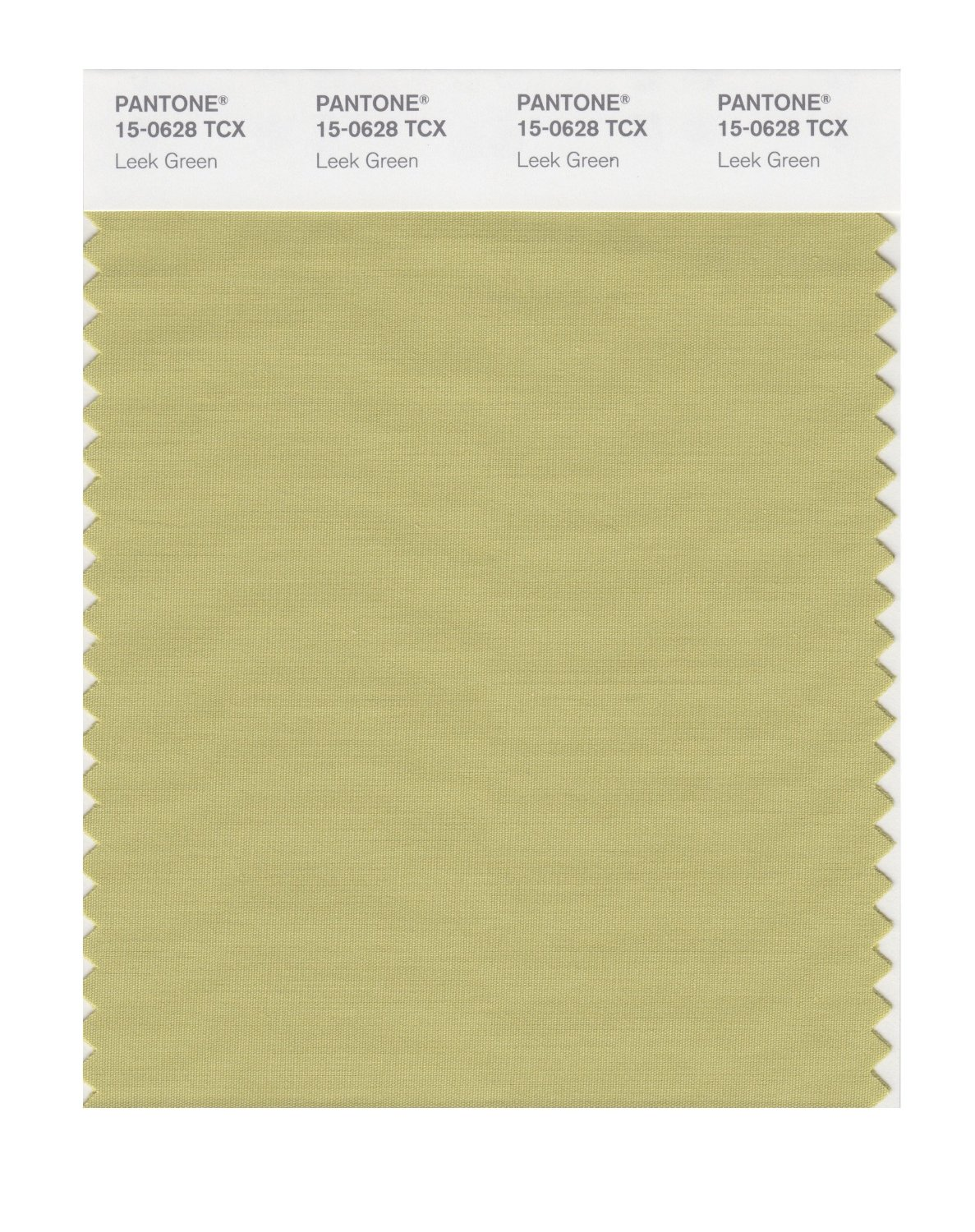 Pantone Smart Swatch 15-0628 Leek Green