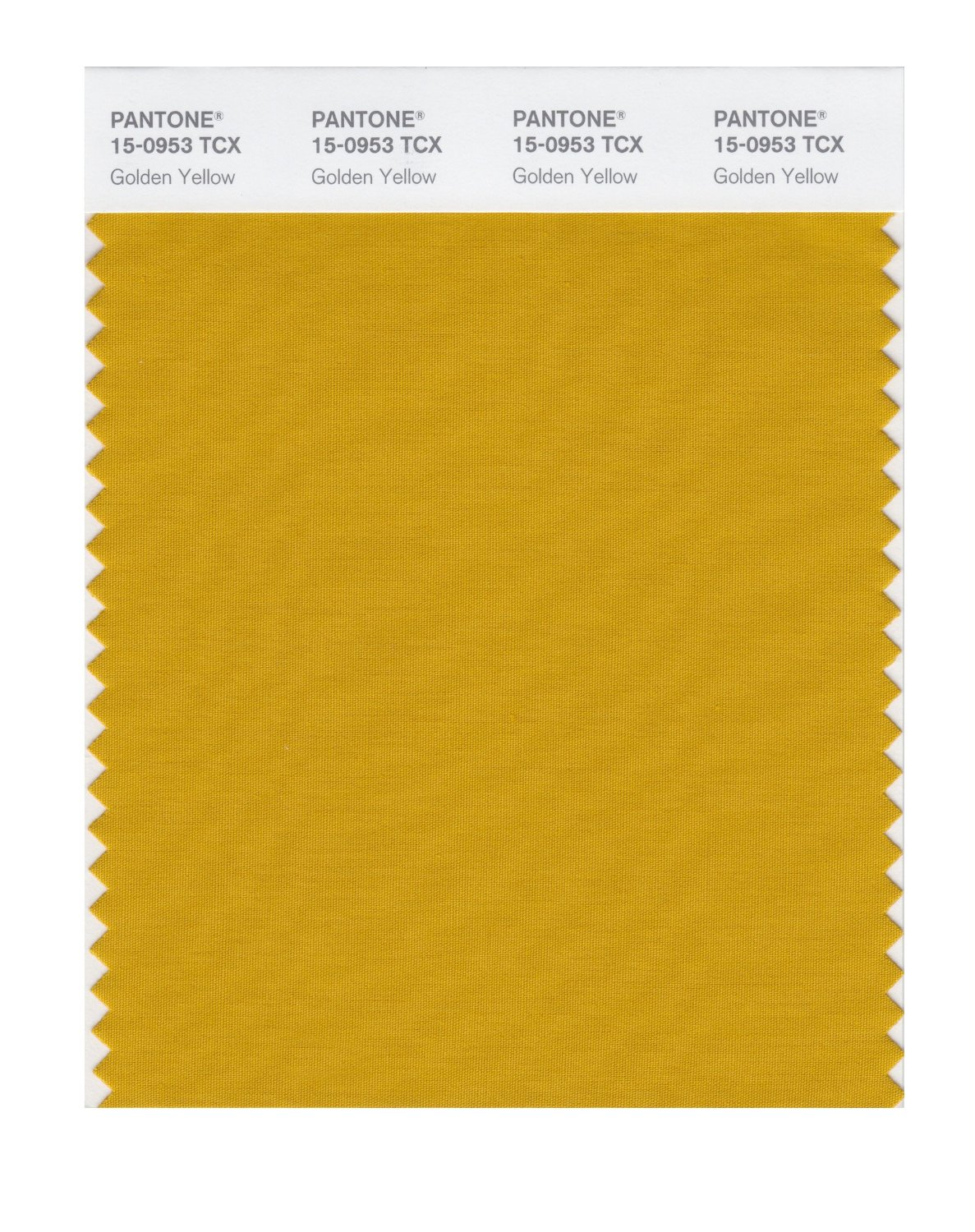Pantone Smart Swatch 15-0953 Golden Yellow