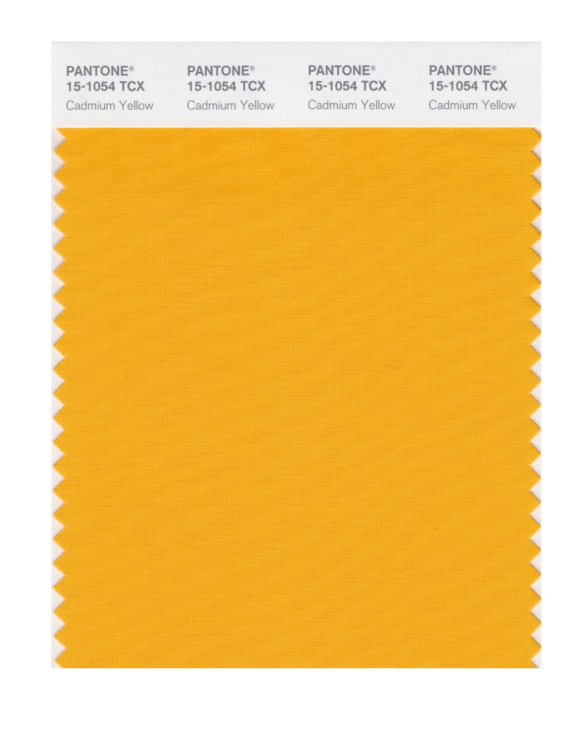 Pantone Smart Swatch 15-1054 Cadmium Yellow