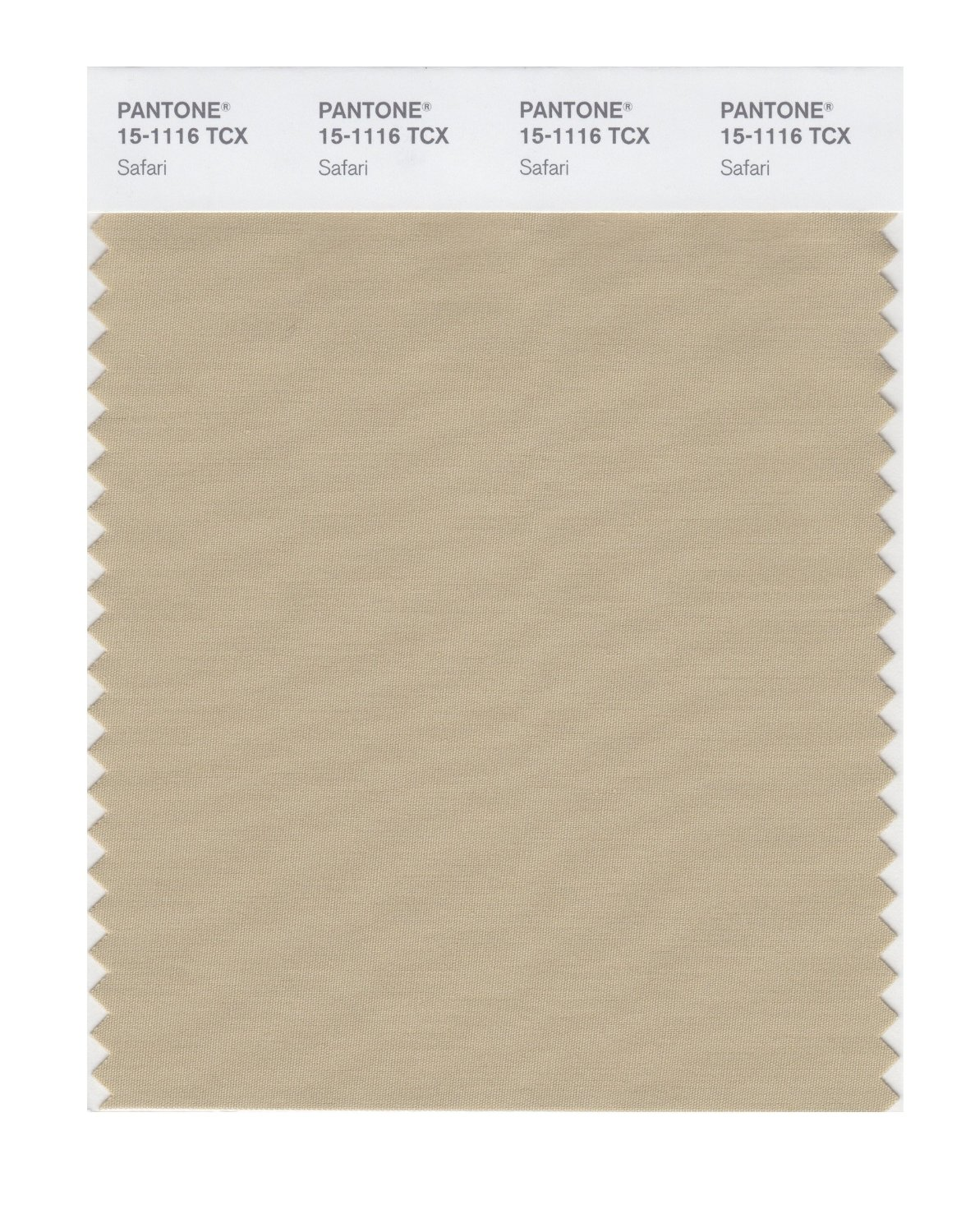 Pantone Smart Swatch 15-1116 Safari