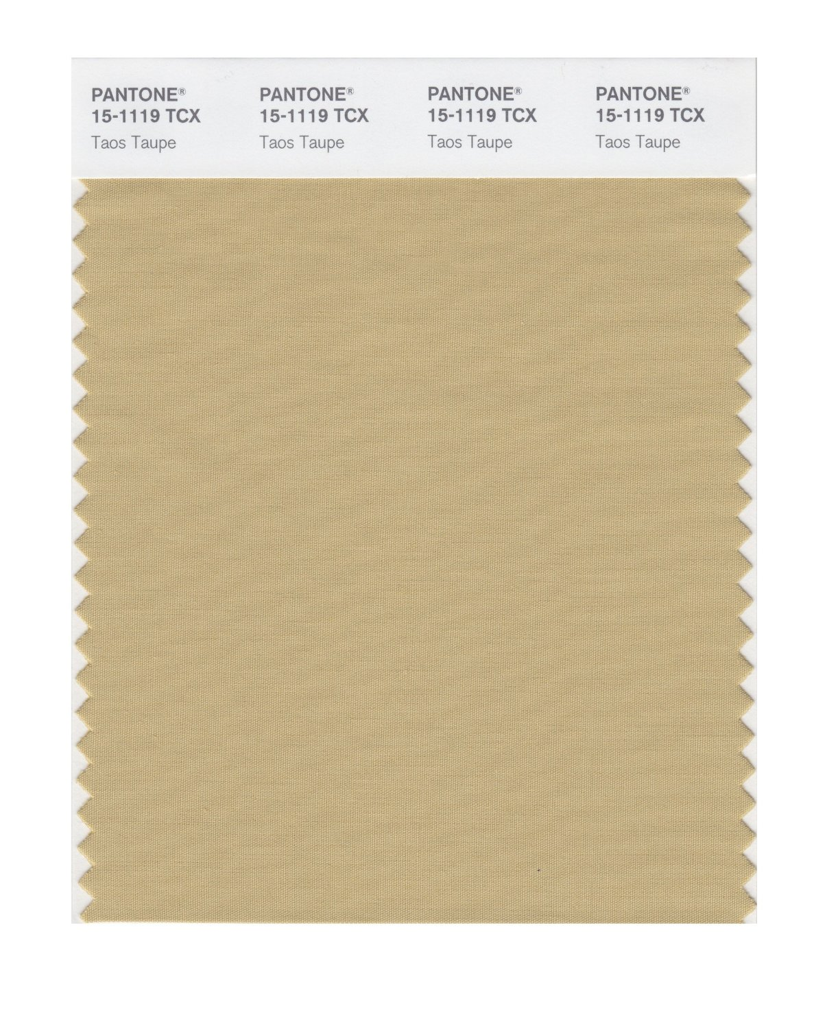 Pantone Smart Swatch 15-1119 Taos Taupe