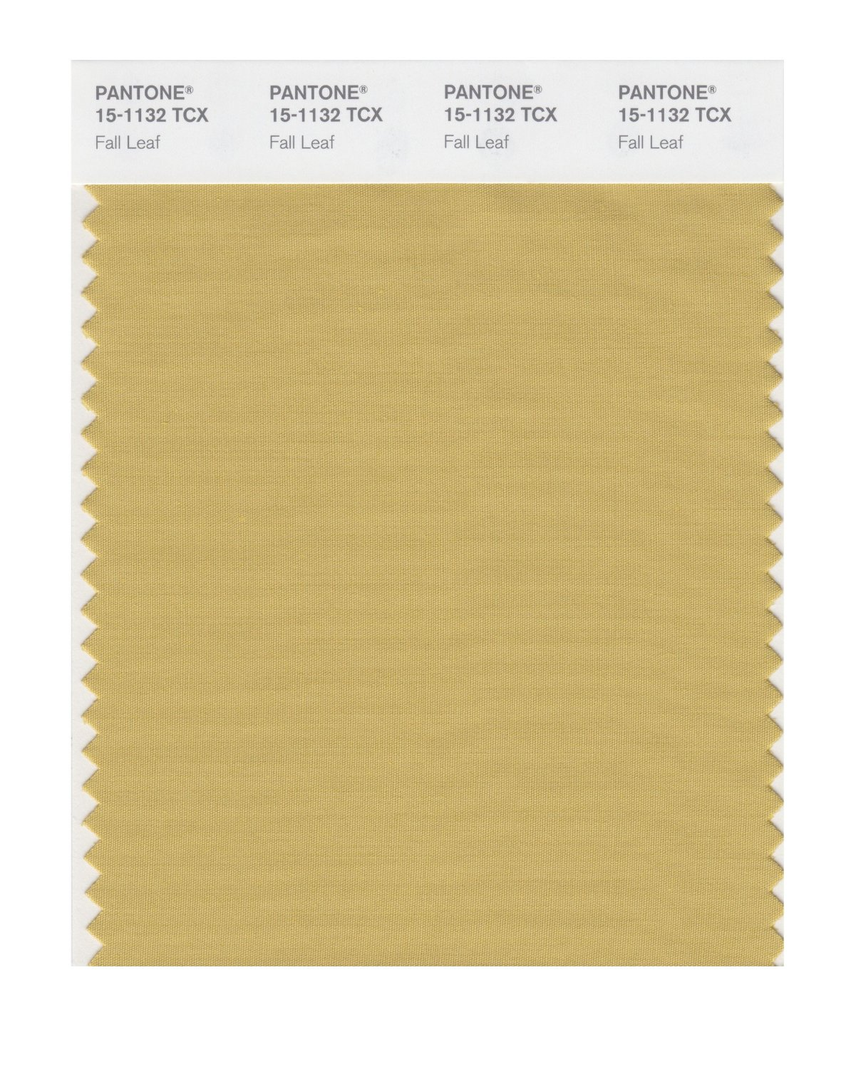 Pantone Smart Swatch 15-1132 Fall Leaf