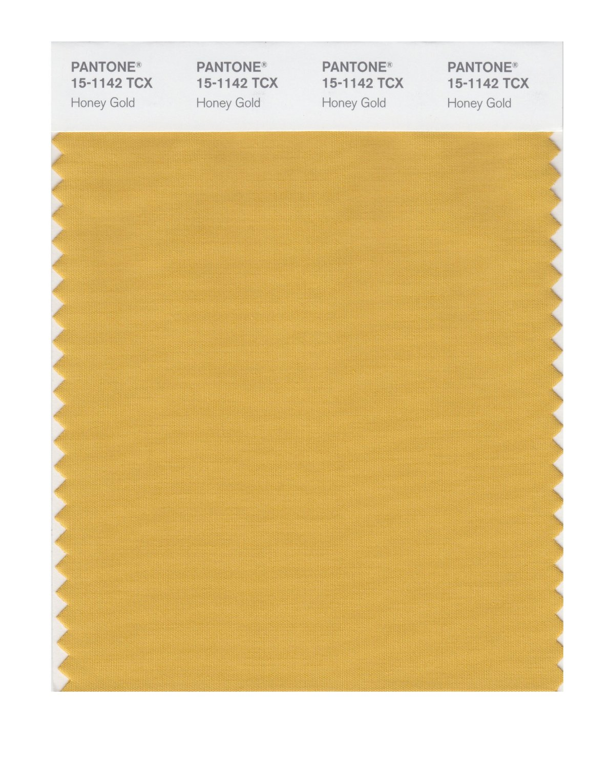 Pantone Smart Swatch 15-1142 Honey Gold