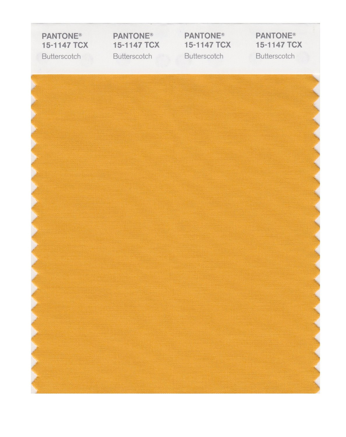 Pantone Smart Swatch 15-1147 Butterscotch