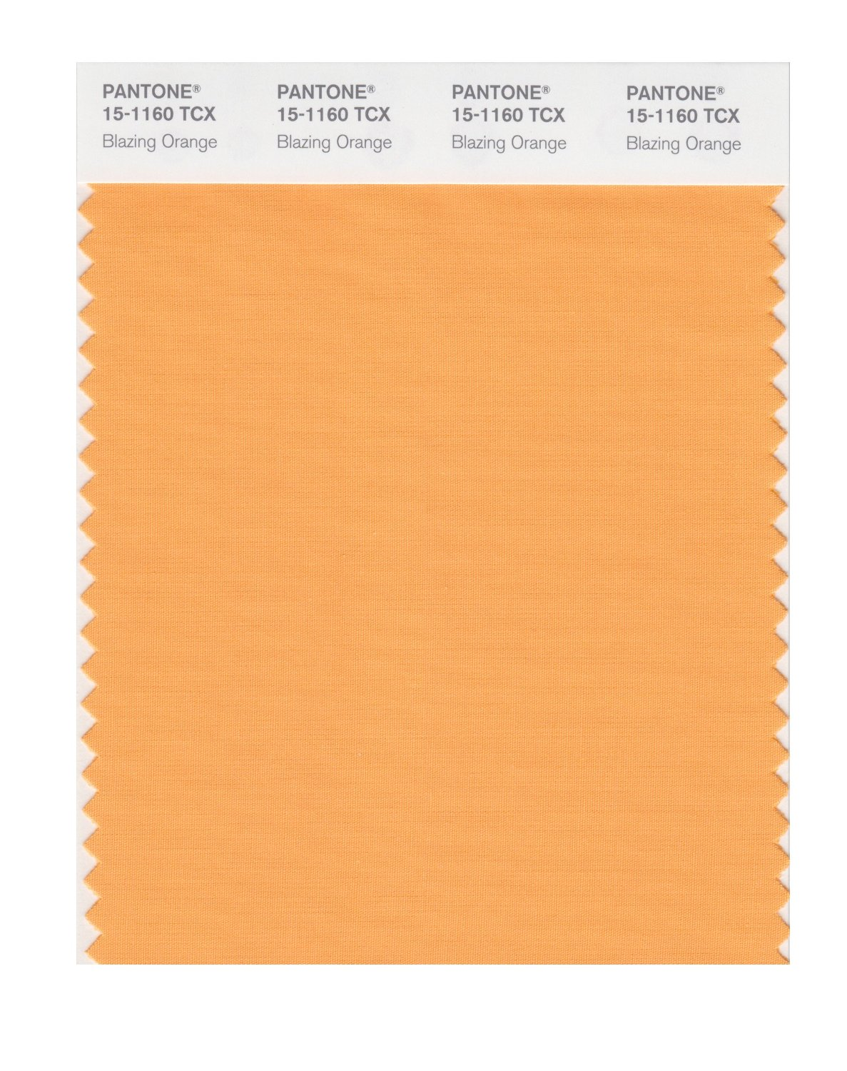 Pantone Smart Swatch 15-1160 Blazing Orange