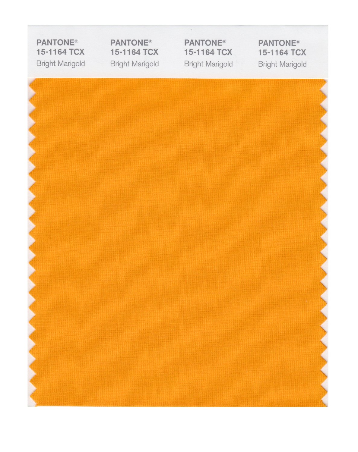 Pantone Smart Swatch 15-1164 Bright Marigold