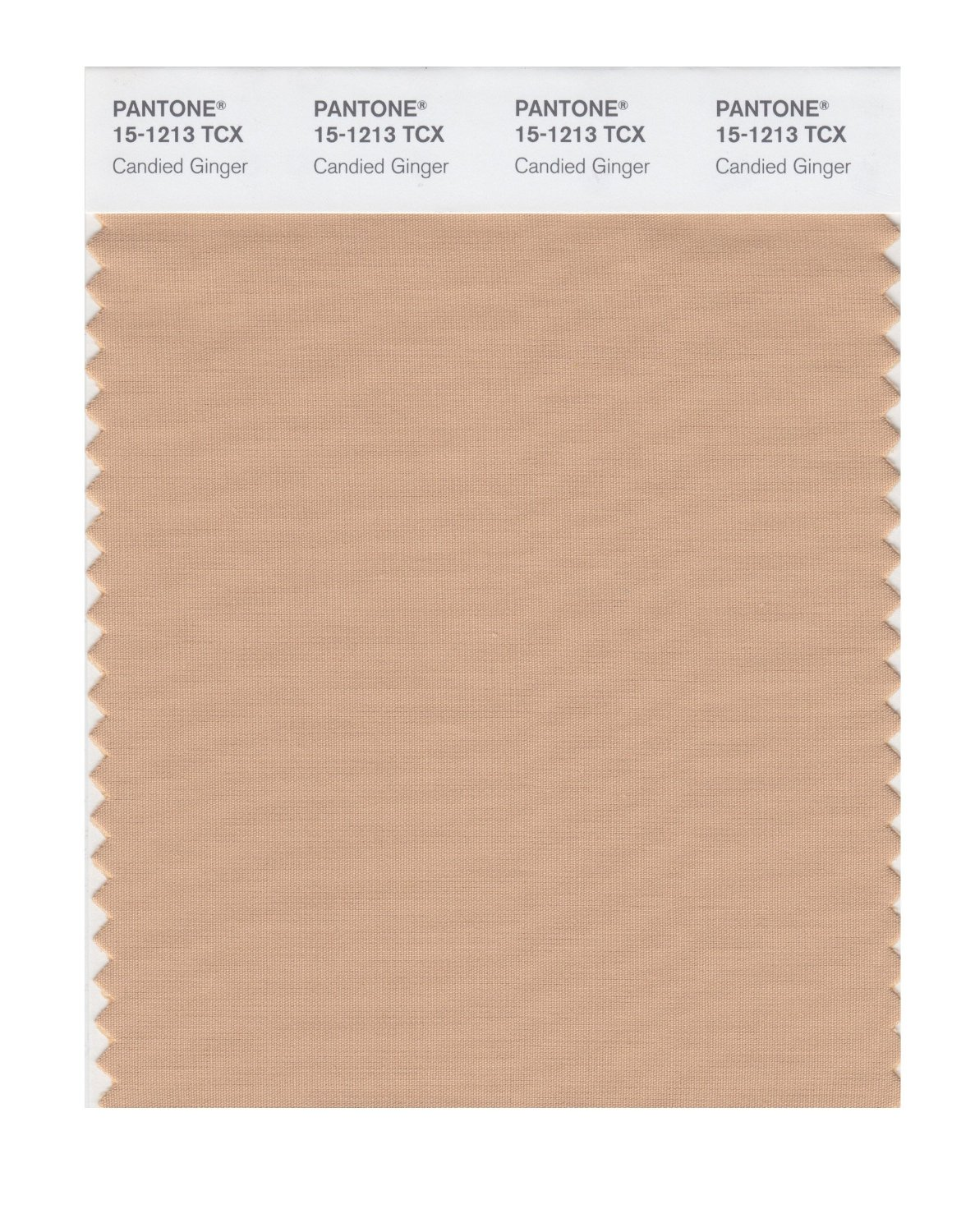 Pantone Smart Swatch 15-1213 Candied Ginger