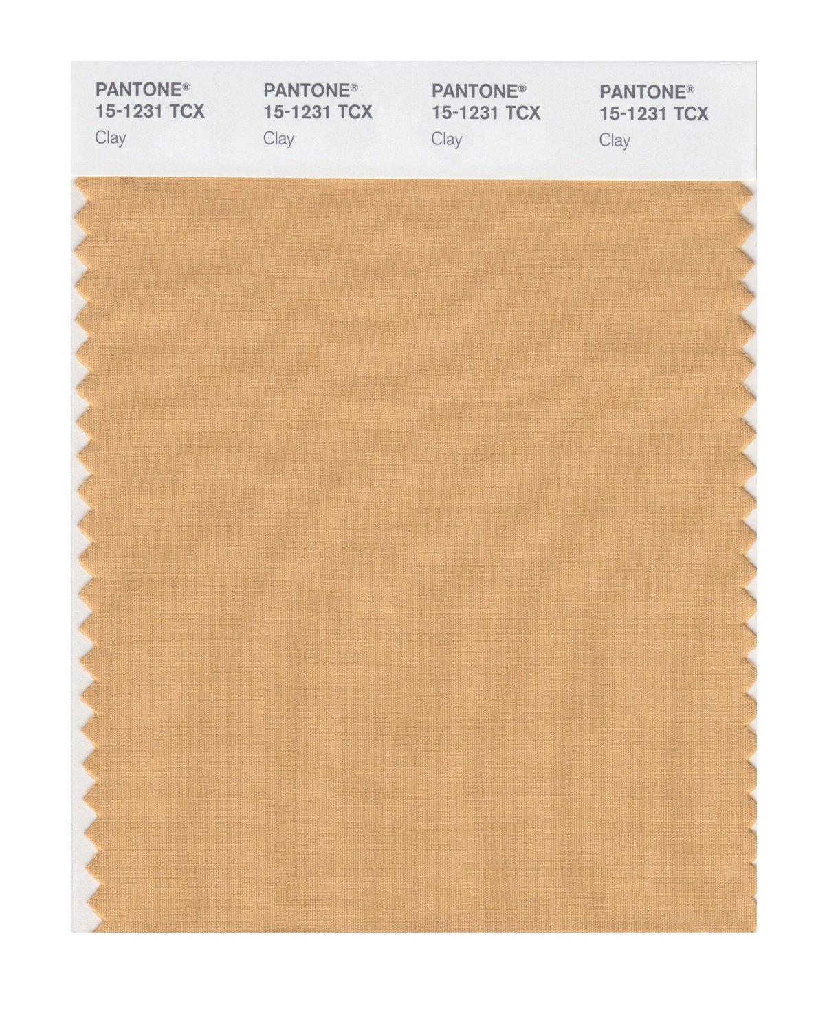 Pantone Smart Swatch 15-1231 Clay