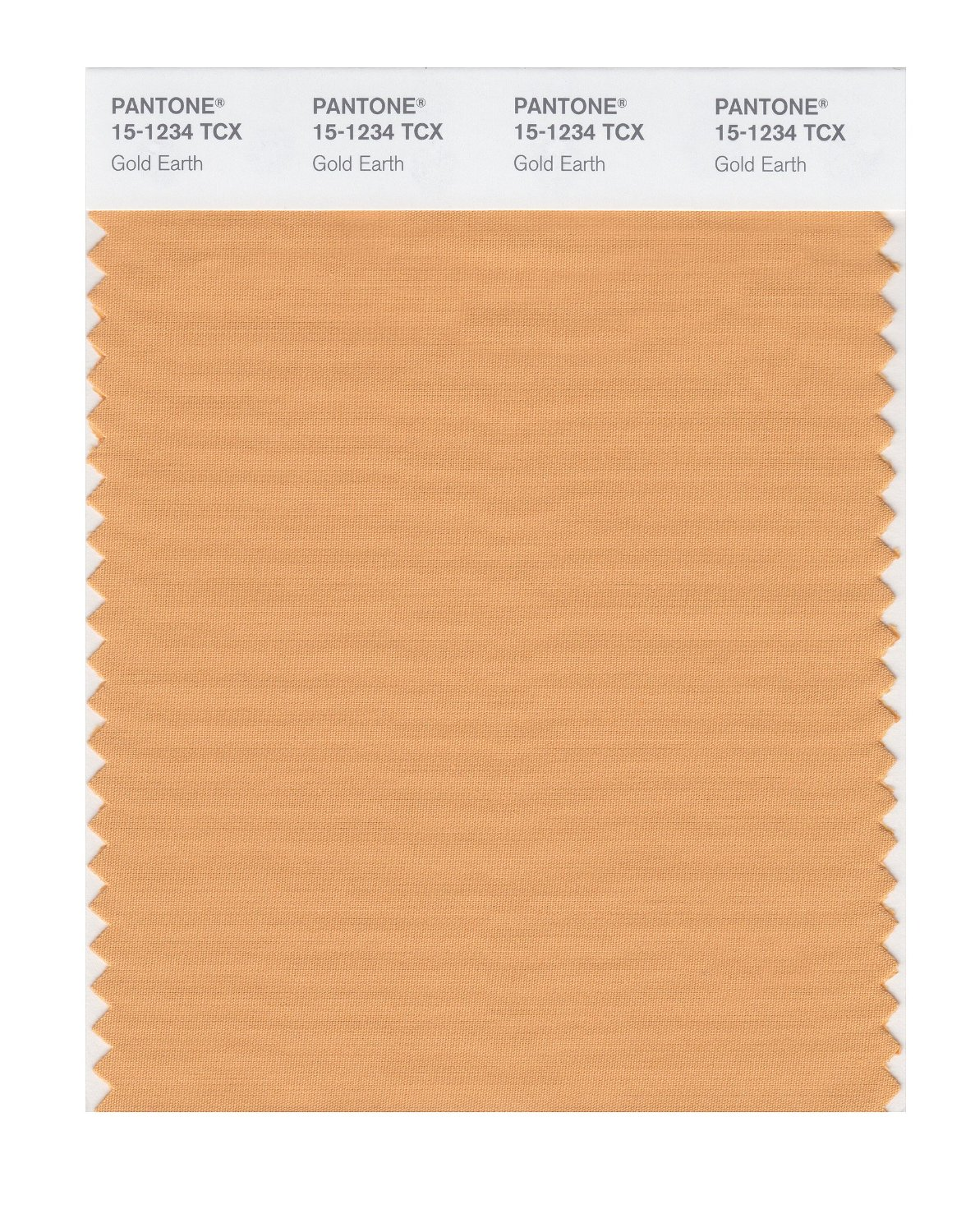 Pantone Smart Swatch 15-1234 Gold Earth