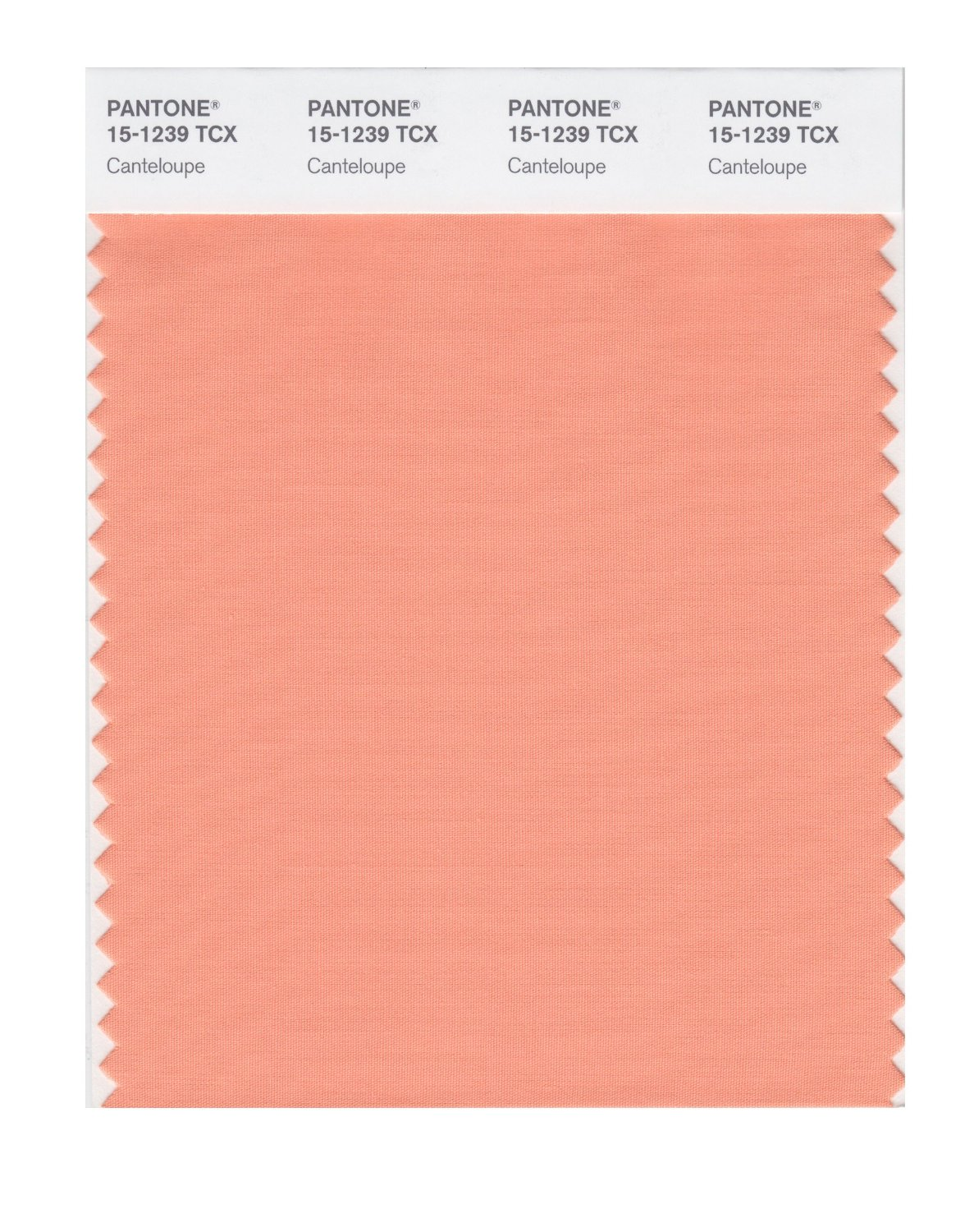 Pantone Smart Swatch 15-1239 Canteloupe