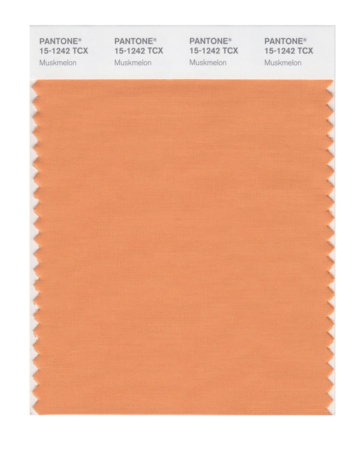 Pantone Smart Swatch 15-1242 Muskmelon