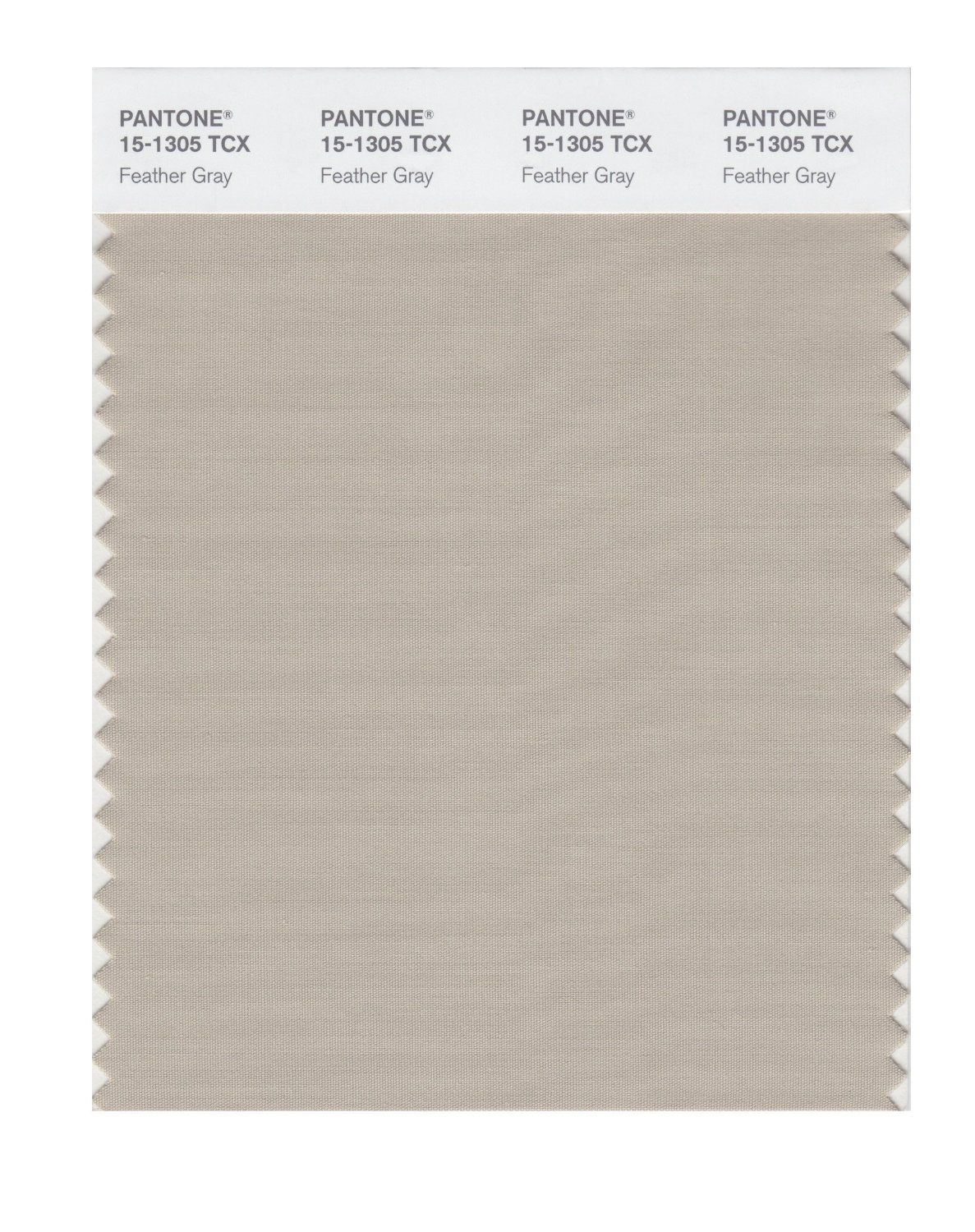 Pantone Smart Swatch 15-1305 Feather Gray