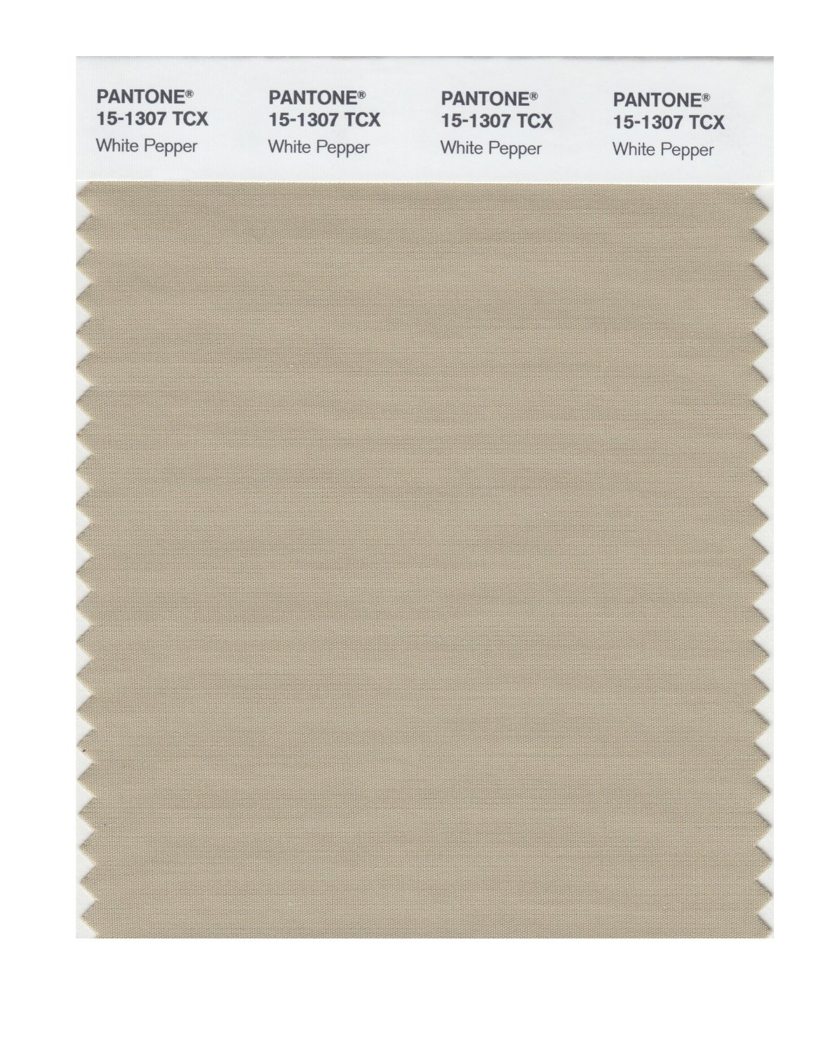 Pantone Smart Swatch 15-1307 White Pepper