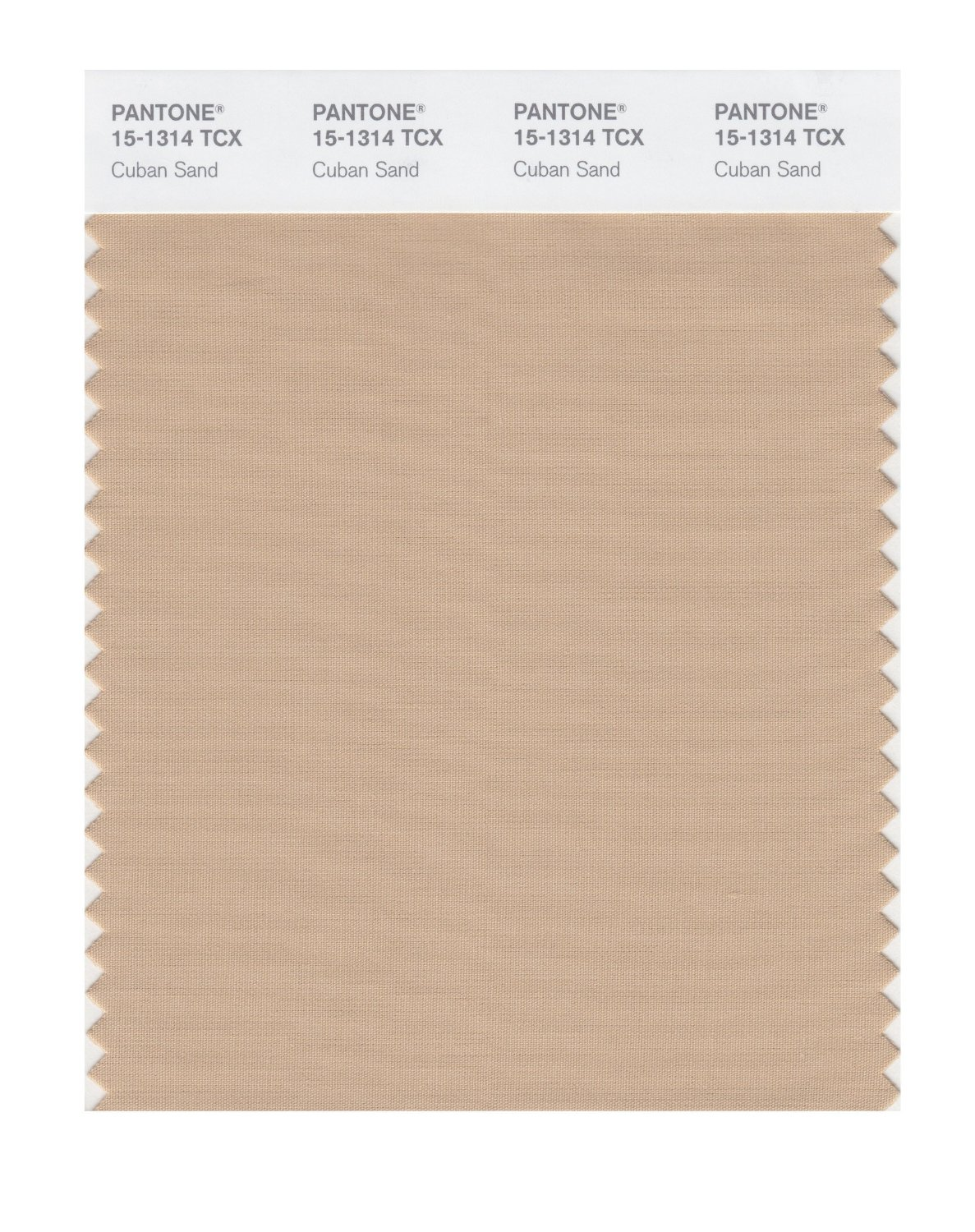 Pantone Smart Swatch 15-1314 Cuban Sand