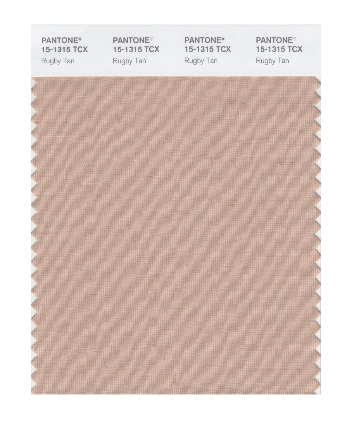 Pantone Smart Swatch 15-1315 Rugby Tan