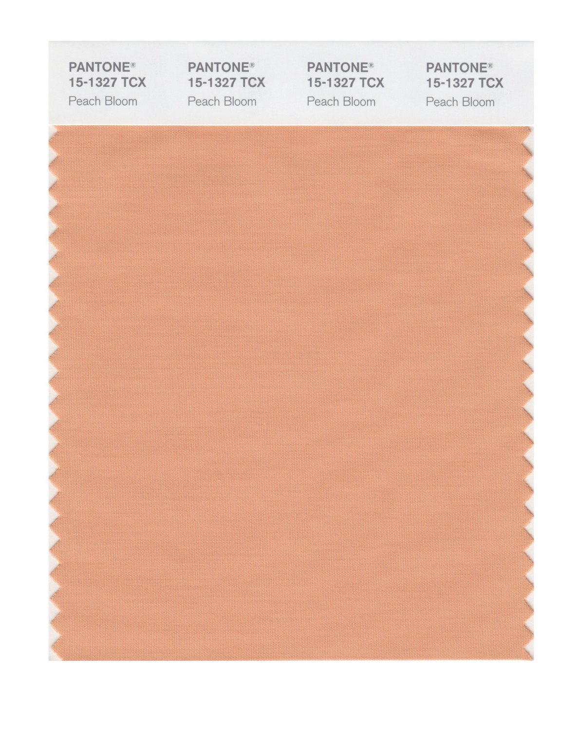 Pantone Smart Swatch 15-1327 Peach Bloom