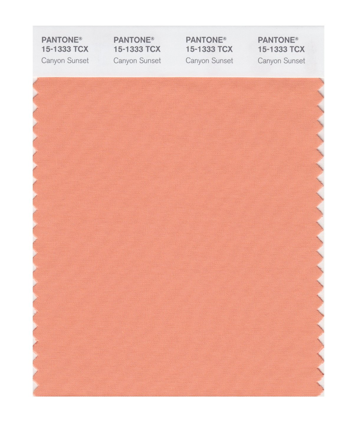 Pantone Smart Swatch 15-1333 Canyon Sunset.