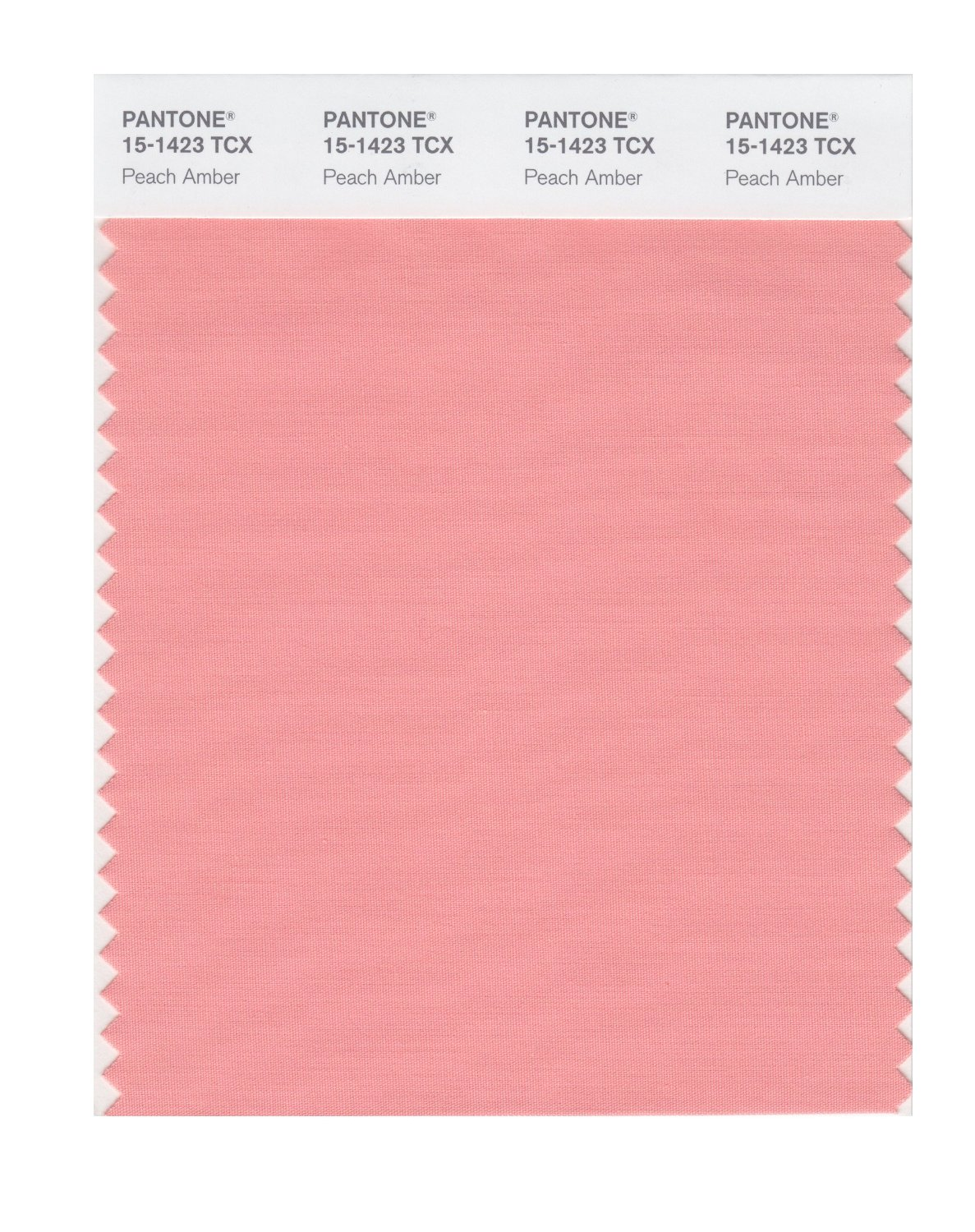 Buy Pantone Smart Swatch 15 1423 Peach Amber